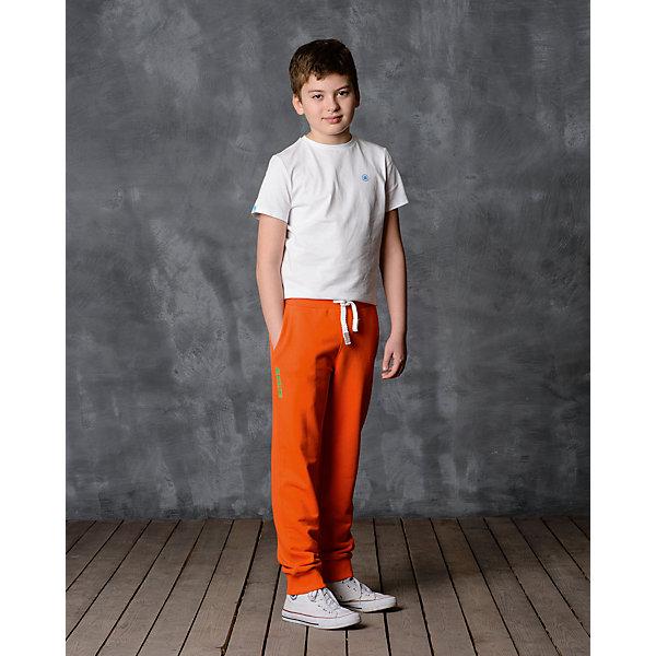 Брюки для мальчика Modniy JukДжинсы и брючки<br>Характеристики товара:<br><br>• цвет: оранжевый<br>• состав: 65% хлопок, 35% полиэстер<br>• спортивный силуэт<br>• карманы<br>• пояс - мягкая резинка<br>• манжеты<br>• логотип<br>• шнурок в поясе<br>• страна бренда: Российская Федерация<br>• страна производства: Российская Федерация<br><br>Модели одежды из новой коллекции от бренда Модный жук - это стильные и удобные вещи, созданные специально для детей. Они отличаются продуманным дизайном, качественными материалами и комфортной посадкой. Дети носят их с удовольствием! Стильные брюки спортивного силуэта - хит сезона, отличный вариант базовой вещи для разной погоды. Они отлично сочетаются с майками, футболками, куртками. Хорошо сидят по фигуре.<br>Одежда и аксессуары от российского бренда Модный жук - это способ пополнить гардероб ребенка модными изделиями по доступной цене. Для их производства используются только безопасные, проверенные материалы и фурнитура. Новая коллекция поддерживает хорошие традиции бренда! <br><br>Брюки для мальчика от популярного бренда Модный жук можно купить в нашем интернет-магазине.<br>Ширина мм: 215; Глубина мм: 88; Высота мм: 191; Вес г: 336; Цвет: оранжевый; Возраст от месяцев: 24; Возраст до месяцев: 36; Пол: Мужской; Возраст: Детский; Размер: 92,98; SKU: 5613584;