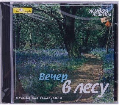Би Смарт CD Вечер в лесу