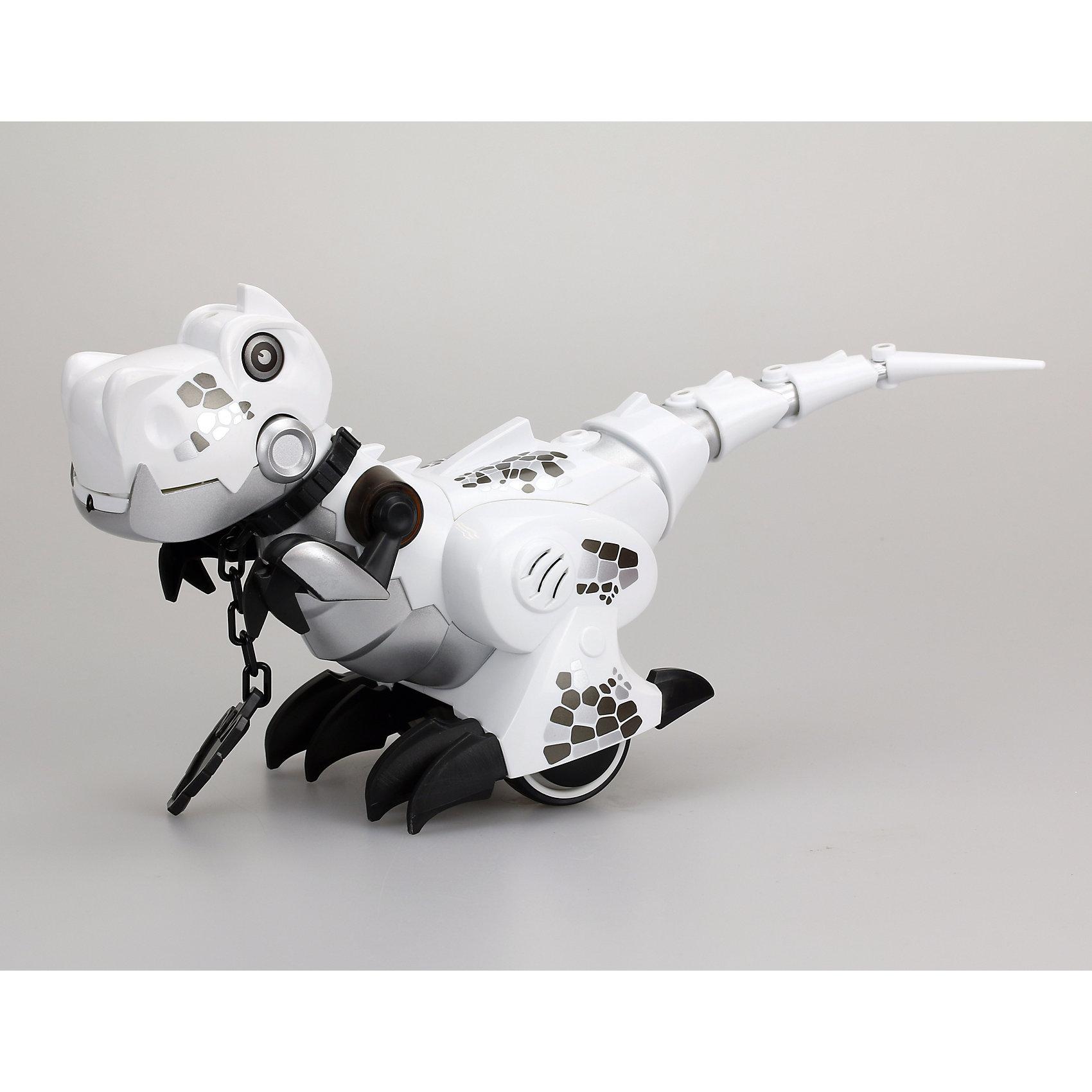 Интерактивная игрушка Silverlit Приручи динозавра (свет, звук), белыйРоботы<br>Характеристики товара:<br><br>• возраст: от 5 лет;<br>• материал: пластик, металл;<br>• в комплекте: динозавр, пульт, ошейник, инструкция;<br>• тип батареек: 6 батареек ААА;<br>• наличие батареек: нет в комплекте;<br>• размер игрушки 26,5х10,5х18,5 см;<br>• размер упаковки: 34,2х21,5х15,2 см;<br>• вес упаковки: 760 гр.;<br>• страна производитель: Китай.<br><br>Игрушка «Приручи динозавра» Silverlit белая — интерактивный робот, выполненный в виде динозавра, который умеет двигаться и выполнять команды. Динозавр работает в 2 режимах «Дикий» и «Домашний». <br><br>В режиме «Дикий» он ведет себя, как настоящий динозавр, двигается и издает звуки, похожие на рычание. В режиме «Домашний» роботом можно управлять и давать ему команды, надев на него специальный ошейник. В этом режиме динозавр будет двигаться вперед, назад, направо и налево.<br><br>Управляется игрушка пультом управления. Робот оснащен световыми и звуковыми эффектами. В зависимости от режима его глаза горят различными цветами. Во время движения срабатывают сенсорные датчики, что позволяет динозавру огибать препятствия. <br><br>Игрушку «Приручи динозавра» Silverlit белую можно приобрести в нашем интернет-магазине.<br><br>Ширина мм: 215<br>Глубина мм: 152<br>Высота мм: 342<br>Вес г: 760<br>Возраст от месяцев: 60<br>Возраст до месяцев: 2147483647<br>Пол: Унисекс<br>Возраст: Детский<br>SKU: 5631990