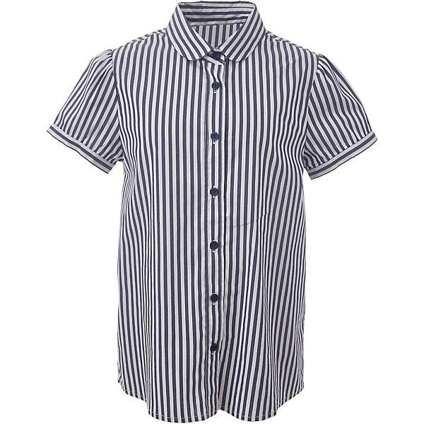 Блузка для девочки GulliverБлузки и рубашки<br>Характеристики товара:<br><br>• цвет: синий/белый<br>• состав: 75% хлопок, 23% полиэстер, 2% эластан <br>• сезон: демисезон<br>• с коротким рукавом<br>• застежка: пуговицы<br>• особенности: школьная, повседневная, в полоску<br>• страна бренда: Российская Федерация<br>• страна производства: Российская Федерация<br><br>Школьная блузка с коротким рукавом для девочки. Блузка в полоску застегивается на пуговицы насыщенного синего цвета. Блузка свободного кроя.<br><br>Блузку для девочки Gulliver (Гулливер) можно купить в нашем интернет-магазине.<br><br>Ширина мм: 186<br>Глубина мм: 87<br>Высота мм: 198<br>Вес г: 197<br>Цвет: белый<br>Возраст от месяцев: 72<br>Возраст до месяцев: 84<br>Пол: Женский<br>Возраст: Детский<br>Размер: 122,170,164,158,152,146,140,134,128<br>SKU: 6678758