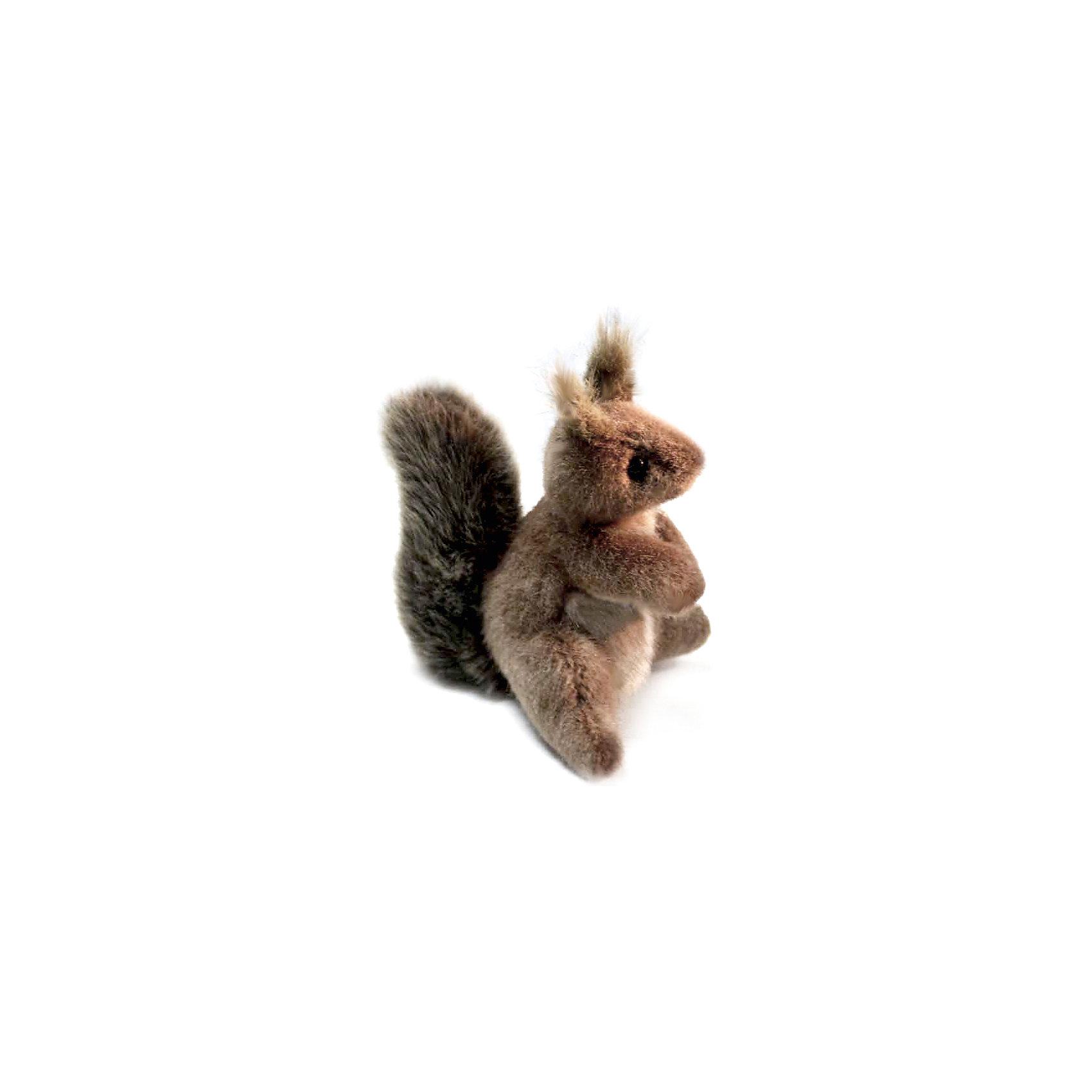 Мягкая игрушка Hansa Белка, 16 смМягкие игрушки животные<br>Характеристики товара:<br><br>• возраст: от 3 лет;<br>• материал: искусственный мех;<br>• высота игрушки: 16 см;<br>• размер упаковки: 16х13х11 см;<br>• вес упаковки: 55 гр.;<br>• страна производитель: Филиппины.<br><br>Мягкая игрушка Белка Hansa 16 см — очаровательный зверек с пушистым хвостиком и острыми ушками, который станет для ребенка любимым домашним питомцем. Игрушку можно брать с собой на прогулку, в детский садик, в гости и устраивать вместе с друзьями веселые игры. Игрушка сделана из качественных безопасных материалов.<br><br>Мягкую игрушку Белка Hansa 16 см можно приобрести в нашем интернет-магазине.<br><br>Ширина мм: 130<br>Глубина мм: 110<br>Высота мм: 160<br>Вес г: 55<br>Возраст от месяцев: 36<br>Возраст до месяцев: 2147483647<br>Пол: Унисекс<br>Возраст: Детский<br>SKU: 6680717