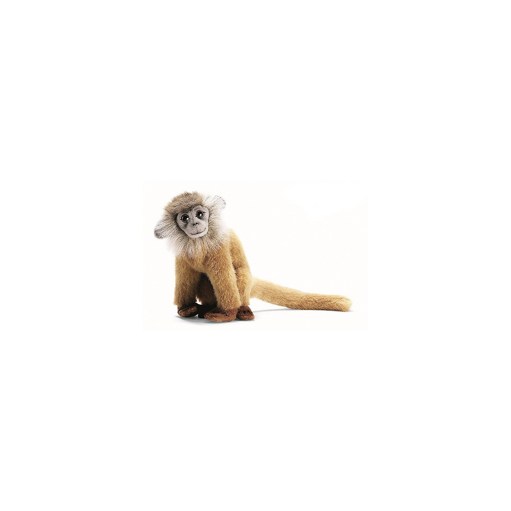 Мягкая игрушка Hansa Лангур палевый, 18 смМягкие игрушки животные<br>Характеристики товара:<br><br>• возраст: от 3 лет;<br>• материал: искусственный мех;<br>• высота игрушки: 18 см;<br>• размер упаковки: 18х16х13 см;<br>• вес упаковки: 80 гр.;<br>• страна производитель: Филиппины.<br><br>Мягкая игрушка Лангур палевый Hansa 18 см — очаровательная обезьянка с глазками-пуговками и длинным хвостиком, которая станет для ребенка любимым домашним питомцем. Игрушку можно брать с собой на прогулку, в детский садик, в гости и устраивать вместе с друзьями веселые игры. <br><br>Внутри проходит титановый каркас, который позволяет менять положение лап, туловища, поворачивать голову. Игрушка сделана из качественных безопасных материалов.<br><br>Мягкую игрушку Лангур палевый Hansa 18 см можно приобрести в нашем интернет-магазине.<br><br>Ширина мм: 160<br>Глубина мм: 130<br>Высота мм: 180<br>Вес г: 80<br>Возраст от месяцев: 36<br>Возраст до месяцев: 2147483647<br>Пол: Унисекс<br>Возраст: Детский<br>SKU: 6680726