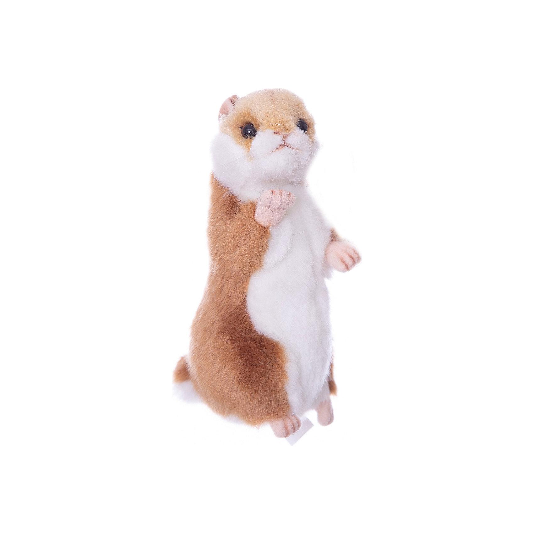 Мягкая игрушка Hansa Хомячок (стоящий), 15 смМягкие игрушки животные<br>Характеристики товара:<br><br>• возраст: от 3 лет;<br>• материал: искусственный мех;<br>• высота игрушки: 15 см;<br>• размер упаковки: 15х8х6 см;<br>• вес упаковки: 75 гр.;<br>• страна производитель: Филиппины.<br><br>Мягкая игрушка Хомячок Hansa 15 см — очаровательный пушистый хомячок с глазками-пуговками и маленькими лапками, который станет для ребенка любимым домашним питомцем. Игрушку можно брать с собой на прогулку, в детский садик, в гости и устраивать вместе с друзьями веселые игры. <br><br>Внутри проходит титановый каркас, который позволяет менять положение лап, туловища, поворачивать голову. Игрушка сделана из качественных безопасных материалов.<br><br>Мягкую игрушку Хомячок Hansa 15 см можно приобрести в нашем интернет-магазине.<br><br>Ширина мм: 80<br>Глубина мм: 60<br>Высота мм: 150<br>Вес г: 75<br>Возраст от месяцев: 36<br>Возраст до месяцев: 2147483647<br>Пол: Унисекс<br>Возраст: Детский<br>SKU: 6680728