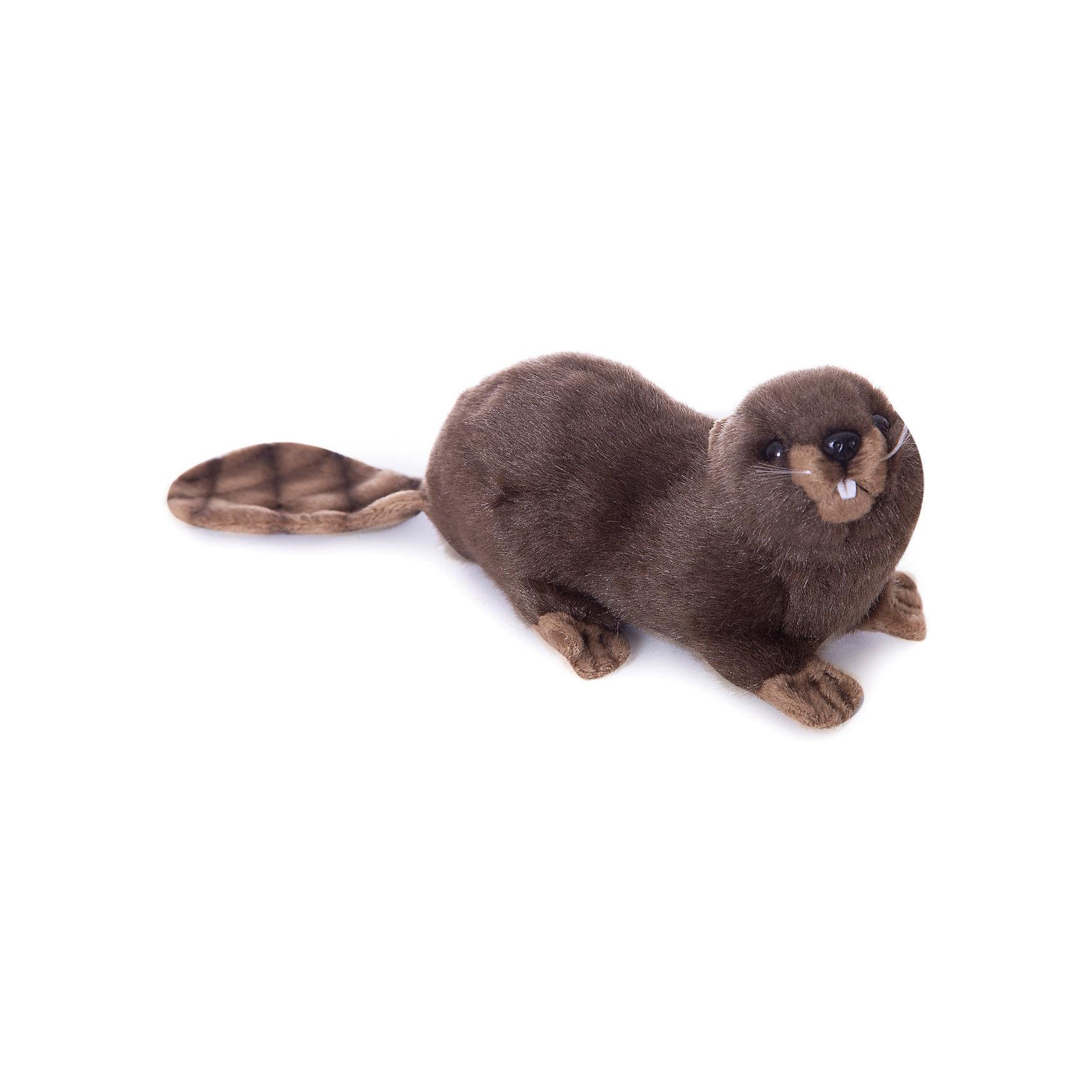 Мягкая игрушка Hansa Бобёр, 20 смМягкие игрушки животные<br>Характеристики товара:<br><br>• возраст: от 3 лет;<br>• материал: искусственный мех;<br>• длина игрушки: 20 см;<br>• размер упаковки: 20х10х11 см;<br>• вес упаковки: 70 гр.;<br>• страна производитель: Филиппины.<br><br>Мягкая игрушка Бобер Hansa 20 см — очаровательный пушистый бобер с глазками-пуговками и маленькими лапками, который станет для ребенка любимым домашним питомцем. Игрушку можно брать с собой на прогулку, в детский садик, в гости и устраивать вместе с друзьями веселые игры. <br><br>Внутри проходит титановый каркас, который позволяет менять положение лап, туловища, поворачивать голову. Игрушка сделана из качественных безопасных материалов.<br><br>Мягкую игрушку Бобер Hansa 20 см можно приобрести в нашем интернет-магазине.<br><br>Ширина мм: 200<br>Глубина мм: 100<br>Высота мм: 110<br>Вес г: 70<br>Возраст от месяцев: 36<br>Возраст до месяцев: 2147483647<br>Пол: Унисекс<br>Возраст: Детский<br>SKU: 6680729