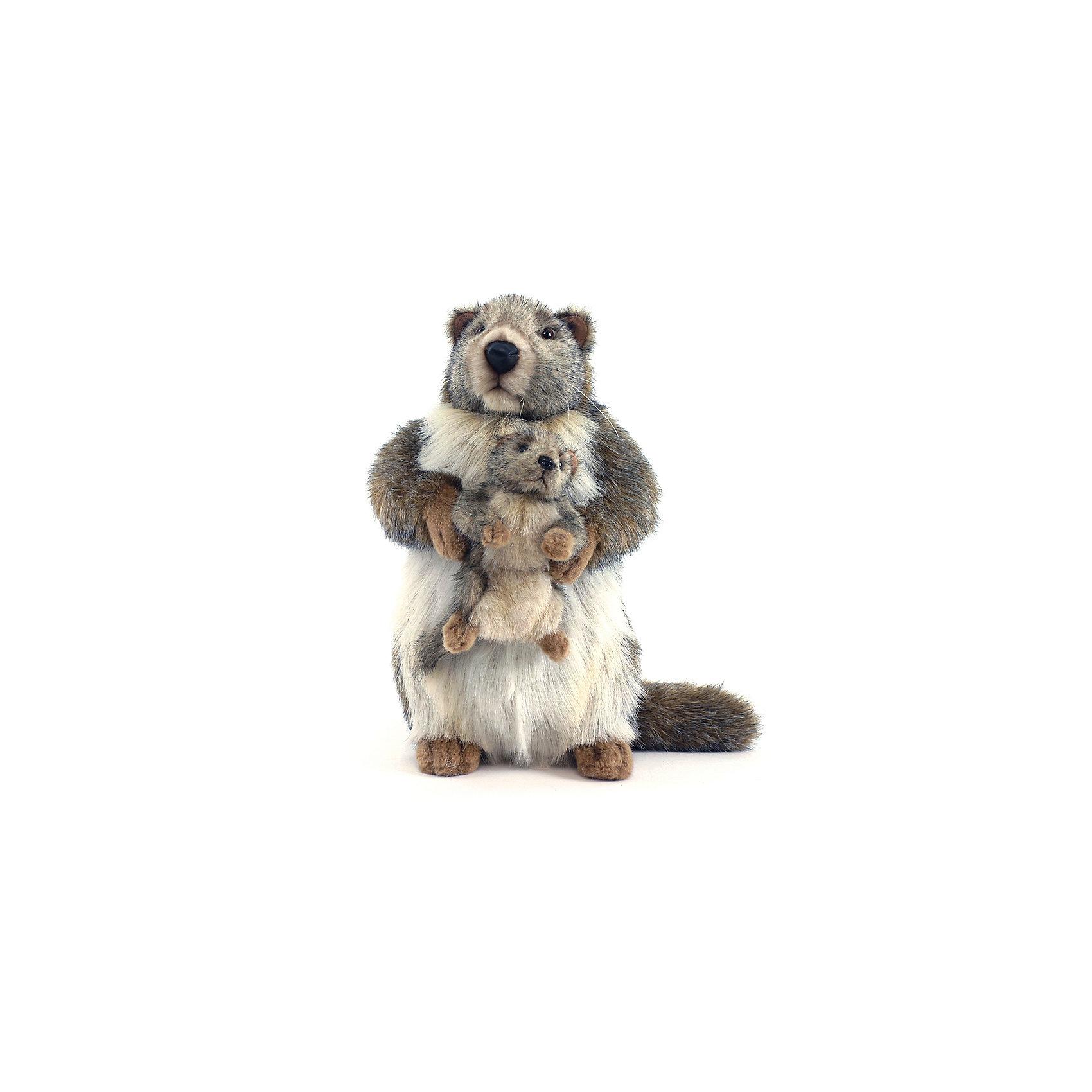 Мягкая игрушка Hansa Сурок с детенышем, 35 смМягкие игрушки животные<br>Характеристики товара:<br><br>• возраст: от 3 лет;<br>• материал: искусственный мех;<br>• высота игрушки: 35 см;<br>• размер упаковки: 35х33х23 см;<br>• вес упаковки: 260 гр.;<br>• страна производитель: Филиппины.<br><br>Мягкая игрушка Сурок с детенышем Hansa 35 см — пушистая мама-сурок, которая держит в лапках своего детеныша. Игрушку можно брать с собой на прогулку, в детский садик, в гости и устраивать вместе с друзьями веселые игры. <br><br>Внутри проходит титановый каркас, который позволяет менять положение лап, туловища, поворачивать голову. Игрушка сделана из качественных безопасных материалов.<br><br>Мягкую игрушку Сурок с детенышем Hansa 35 см можно приобрести в нашем интернет-магазине.<br><br>Ширина мм: 230<br>Глубина мм: 330<br>Высота мм: 350<br>Вес г: 260<br>Возраст от месяцев: 36<br>Возраст до месяцев: 2147483647<br>Пол: Унисекс<br>Возраст: Детский<br>SKU: 6680733