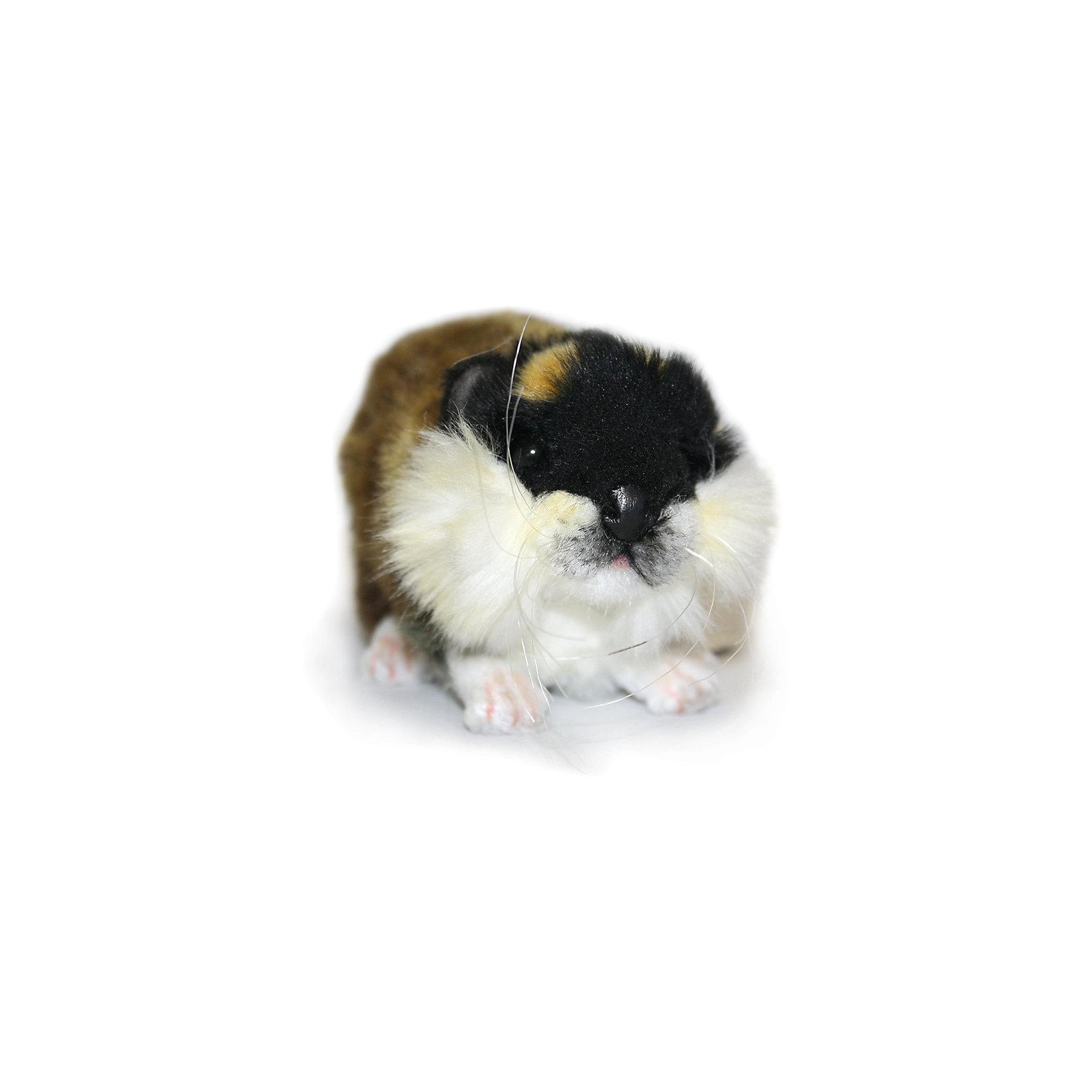 Мягкая игрушка Hansa Норвежский лемминг (морская свинка), 16 смМягкие игрушки животные<br>Характеристики товара:<br><br>• возраст: от 3 лет;<br>• материал: искусственный мех;<br>• длина игрушки: 16 см;<br>• размер упаковки: 16х9х8 см;<br>• вес упаковки: 35 гр.;<br>• страна производитель: Филиппины.<br><br>Мягкая игрушка Норвежский лемминг Hansa 16 см — пушистая морская свинка с глазками-пуговками, которая станет для ребенка любимым домашним питомцем. Игрушку можно брать с собой на прогулку, в детский садик, в гости и устраивать вместе с друзьями веселые игры. <br><br>Внутри проходит титановый каркас, который позволяет менять положение лап, туловища, поворачивать голову. Игрушка сделана из качественных безопасных материалов.<br><br>Мягкую игрушку Норвежский лемминг Hansa 16 см можно приобрести в нашем интернет-магазине.<br><br>Ширина мм: 160<br>Глубина мм: 90<br>Высота мм: 80<br>Вес г: 35<br>Возраст от месяцев: 36<br>Возраст до месяцев: 2147483647<br>Пол: Унисекс<br>Возраст: Детский<br>SKU: 6680737