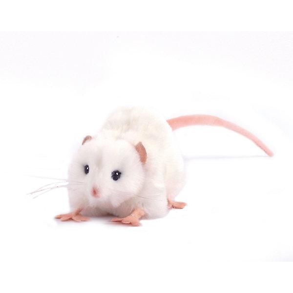 Мягкая игрушка Hansa Крыса белая, 12 смМягкие игрушки животные<br>Характеристики товара:<br><br>• возраст: от 3 лет;<br>• материал: искусственный мех;<br>• длина игрушки: 12 см;<br>• размер упаковки: 12х6х7 см;<br>• вес упаковки: 15 гр.;<br>• страна производитель: Филиппины.<br><br>Мягкая игрушка Крыса белая Hansa 12 см — маленькая белая мышка с глазками-пуговками и длинным хвостиком, которая станет для ребенка любимым домашним питомцем. Игрушку можно брать с собой на прогулку, в детский садик, в гости и устраивать вместе с друзьями веселые игры. <br><br>Внутри проходит титановый каркас, который позволяет менять положение лап, туловища, поворачивать голову. Игрушка сделана из качественных безопасных материалов.<br><br>Мягкую игрушку Крыса белая Hansa 12 см можно приобрести в нашем интернет-магазине.<br>Ширина мм: 120; Глубина мм: 60; Высота мм: 70; Вес г: 15; Возраст от месяцев: 36; Возраст до месяцев: 2147483647; Пол: Унисекс; Возраст: Детский; SKU: 6680741;