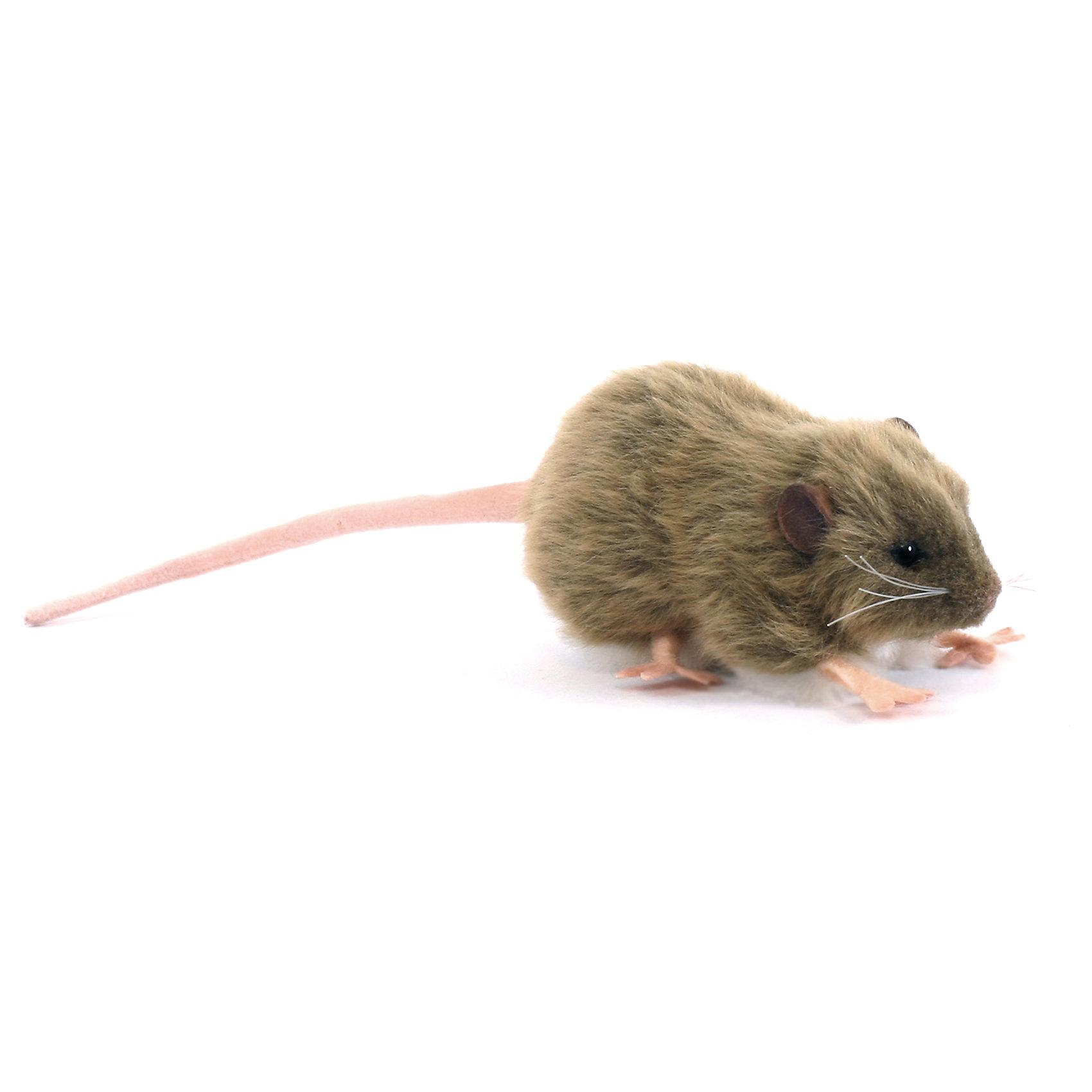 Мягкая игрушка Hansa Крыса бурая, 12 смМягкие игрушки животные<br>Характеристики товара:<br><br>• возраст: от 3 лет;<br>• материал: искусственный мех;<br>• длина игрушки: 12 см;<br>• размер упаковки: 12х6х7 см;<br>• вес упаковки: 15 гр.;<br>• страна производитель: Филиппины.<br><br>Мягкая игрушка Крыса бурая Hansa 12 см — маленькая мышка с глазками-пуговками и длинным хвостиком, которая станет для ребенка любимым домашним питомцем. Игрушку можно брать с собой на прогулку, в детский садик, в гости и устраивать вместе с друзьями веселые игры. <br><br>Внутри проходит титановый каркас, который позволяет менять положение лап, туловища, поворачивать голову. Игрушка сделана из качественных безопасных материалов.<br><br>Мягкую игрушку Крыса бурая Hansa 12 см можно приобрести в нашем интернет-магазине.<br><br>Ширина мм: 120<br>Глубина мм: 60<br>Высота мм: 70<br>Вес г: 15<br>Возраст от месяцев: 36<br>Возраст до месяцев: 2147483647<br>Пол: Унисекс<br>Возраст: Детский<br>SKU: 6680742
