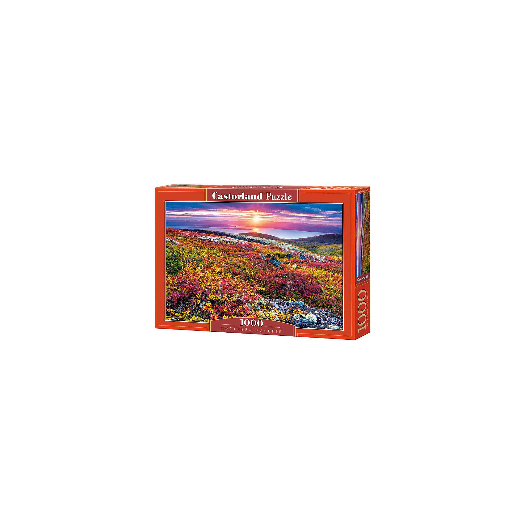 Пазл Северная палитра, 1000 деталей, CastorlandПазлы для детей постарше<br>Характеристики:<br><br>• возраст: от 9 лет<br>• автор: Александр Ермолицкий<br>• количество деталей: 1000 шт.<br>• размер собранного пазла: 68х47 см.<br>• размер 1 элемента пазла: 1,8х1,8 см.<br>• материал: картон<br>• упаковка: картонная коробка<br>• размер упаковки: 35x5x25 см.<br>• вес: 500 гр.<br>• страна обладатель бренда: Польша<br><br>Пазл «Северная палитра» с живописным пейзажем северных широт предназначен для сборки детьми среднего и старшего возраста и, конечно, для взрослых. Холмы с разноцветными травами, озерная гладь и закат солнца.<br><br>Пазл Северная палитра, 1000 деталей, Castorland (Касторленд) можно купить в нашем интернет-магазине.<br><br>Ширина мм: 350<br>Глубина мм: 250<br>Высота мм: 50<br>Вес г: 500<br>Возраст от месяцев: 108<br>Возраст до месяцев: 2147483647<br>Пол: Унисекс<br>Возраст: Детский<br>SKU: 6725068