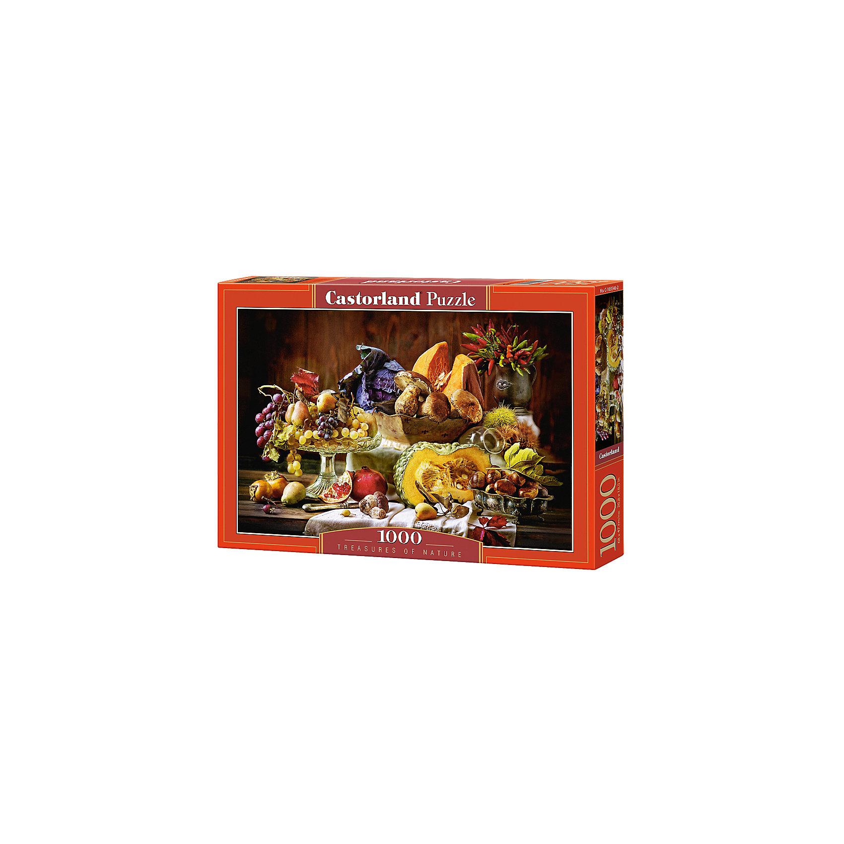 Пазл Дары природы, 1000 деталей, CastorlandКлассические пазлы<br>Характеристики:<br><br>• возраст: от 9 лет<br>• количество деталей: 1000 шт.<br>• размер собранного пазла: 68х47 см.<br>• материал: картон<br>• упаковка: картонная коробка<br>• размер упаковки: 35x5x25 см.<br>• вес: 500 гр.<br>• страна обладатель бренда: Польша<br><br>Пазл «Дары природы» предназначен для сборки детьми среднего и старшего возраста и, конечно, для взрослых. Пазл «Дары природы» - это насыщенные цвета, обилие художественных деталей и интересная сюжетная картина. На картине изображен стол, уставленный яствами: виноград и груши лежат в старинной вазе на высокой ножке, лукошко наполнено грибами и кусочками тыквы, на заднем плане виден кувшин с красными и желтыми стручками перца, со стола спускается вышитое полотенце, на котором лежат кусочки граната, грибы и хурма.<br><br>Пазл Дары природы, 1000 деталей, Castorland (Касторленд) можно купить в нашем интернет-магазине.<br><br>Ширина мм: 350<br>Глубина мм: 250<br>Высота мм: 50<br>Вес г: 500<br>Возраст от месяцев: 108<br>Возраст до месяцев: 2147483647<br>Пол: Унисекс<br>Возраст: Детский<br>SKU: 6725069