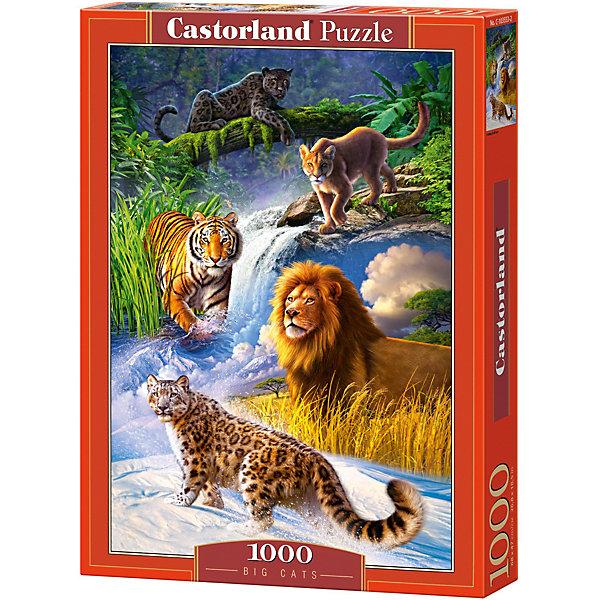 Пазл Castorland Дикие кошки, 1000 деталейПазлы классические<br>Характеристики:<br><br>• возраст: от 9 лет<br>• количество деталей: 1000 шт.<br>• размер собранного пазла: 47х68 см.<br>• материал: картон<br>• упаковка: картонная коробка<br>• размер упаковки: 25x5x35 см.<br>• вес: 500 гр.<br>• страна обладатель бренда: Польша<br><br>Пазл «Дикие кошки» от Castorland (Касторленд) отличается высоким качеством, высоким уровнем полиграфии, насыщенными цветами и идеальной стыковкой элементов. Пазл «Дикие кошки» состоит из тысячи элементов, собрав которые, можно получить чудесную картину с изображенными в местах своего обитания, великолепными хищниками семейства кошачьих.<br><br>Пазл Дикие кошки, 1000 деталей, Castorland (Касторленд) можно купить в нашем интернет-магазине.<br>Ширина мм: 350; Глубина мм: 250; Высота мм: 50; Вес г: 500; Возраст от месяцев: 108; Возраст до месяцев: 2147483647; Пол: Унисекс; Возраст: Детский; SKU: 6725070;