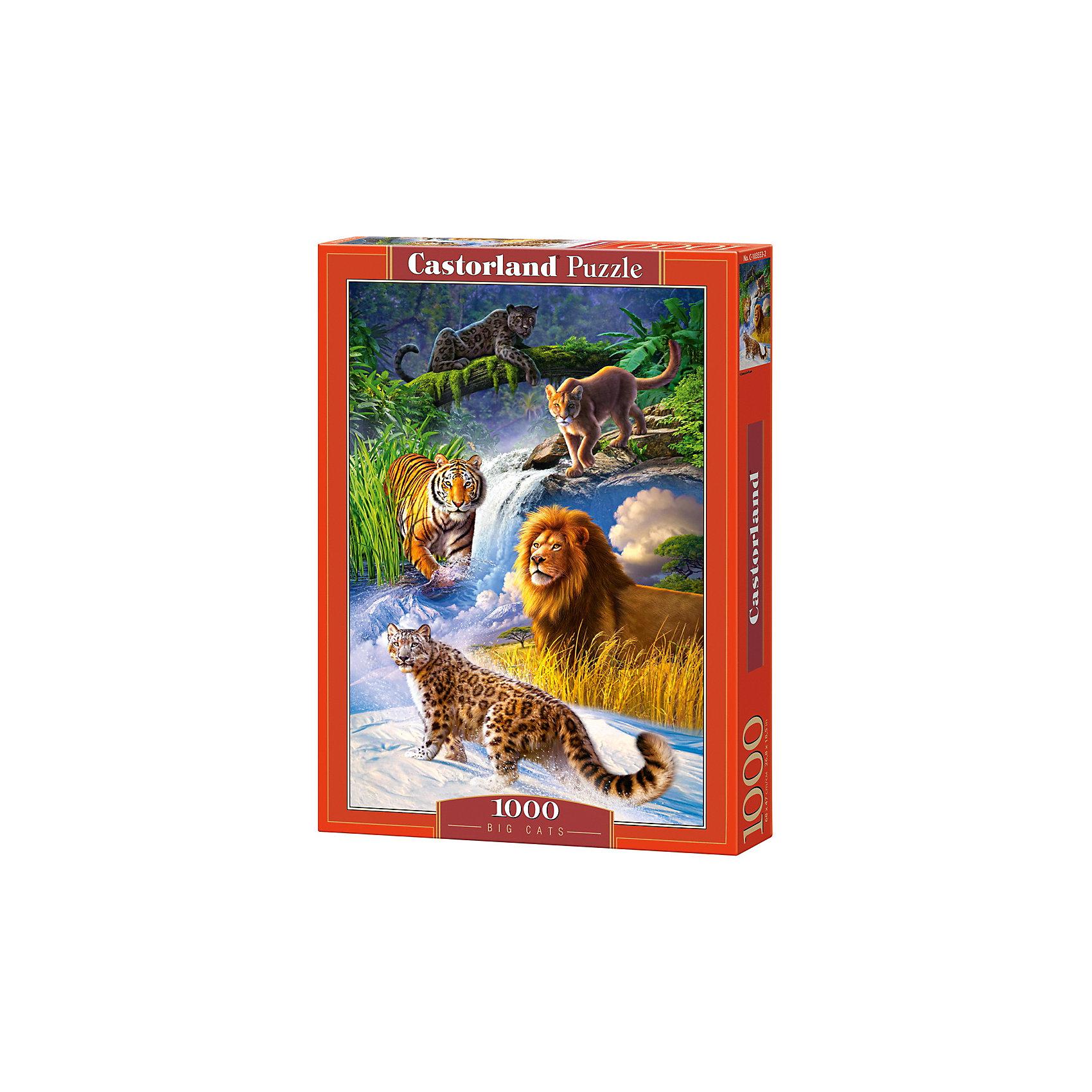 Пазл Castorland Дикие кошки, 1000 деталейПазлы для детей постарше<br>Характеристики:<br><br>• возраст: от 9 лет<br>• количество деталей: 1000 шт.<br>• размер собранного пазла: 47х68 см.<br>• материал: картон<br>• упаковка: картонная коробка<br>• размер упаковки: 25x5x35 см.<br>• вес: 500 гр.<br>• страна обладатель бренда: Польша<br><br>Пазл «Дикие кошки» от Castorland (Касторленд) отличается высоким качеством, высоким уровнем полиграфии, насыщенными цветами и идеальной стыковкой элементов. Пазл «Дикие кошки» состоит из тысячи элементов, собрав которые, можно получить чудесную картину с изображенными в местах своего обитания, великолепными хищниками семейства кошачьих.<br><br>Пазл Дикие кошки, 1000 деталей, Castorland (Касторленд) можно купить в нашем интернет-магазине.<br><br>Ширина мм: 350<br>Глубина мм: 250<br>Высота мм: 50<br>Вес г: 500<br>Возраст от месяцев: 108<br>Возраст до месяцев: 2147483647<br>Пол: Унисекс<br>Возраст: Детский<br>SKU: 6725070