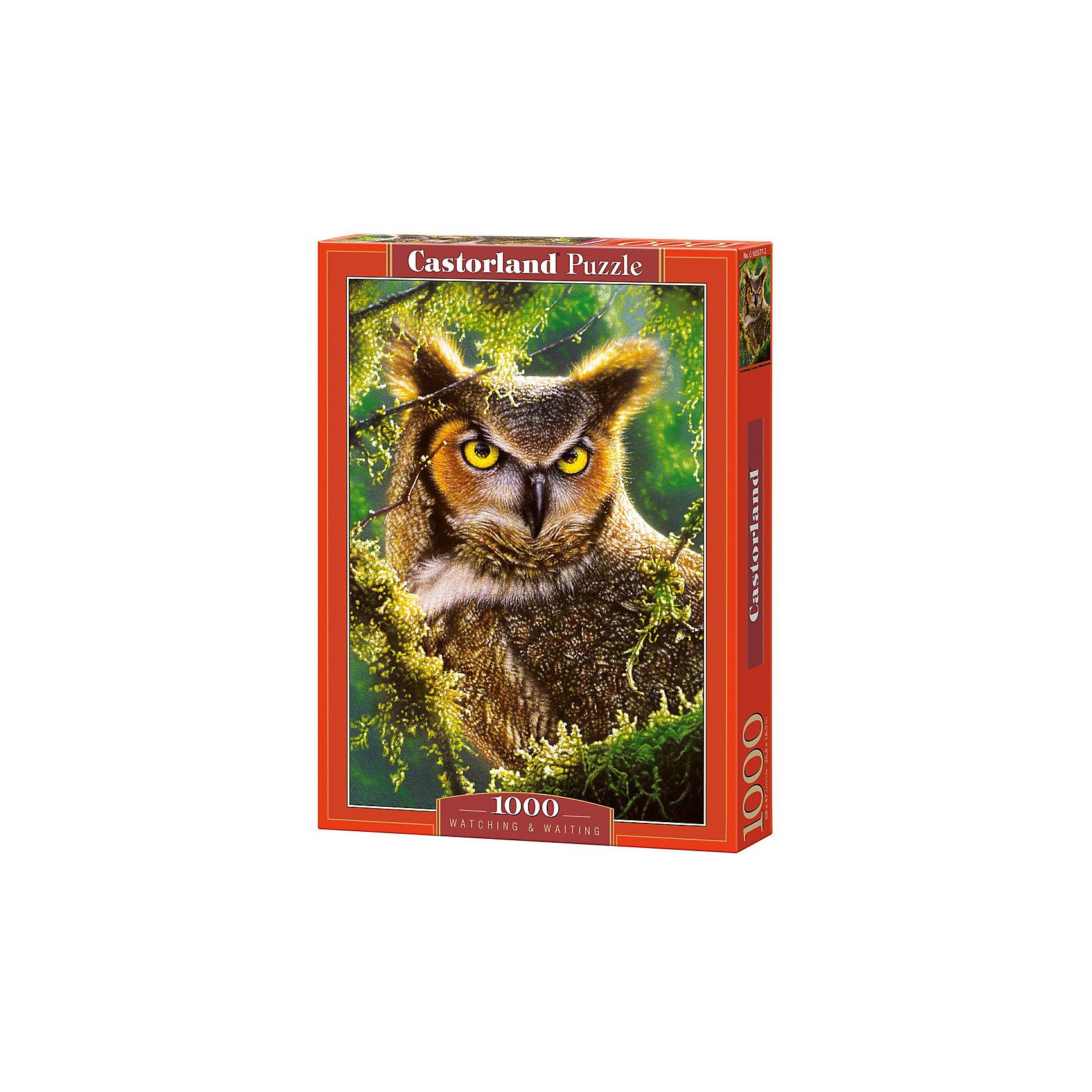 Пазл Castorland Сова. Наблюдение, 1000 деталейПазлы для детей постарше<br>Характеристики:<br><br>• возраст: от 9 лет<br>• количество деталей: 1000 шт.<br>• размер собранного пазла: 47х68 см.<br>• материал: картон<br>• упаковка: картонная коробка<br>• размер упаковки: 25x5x35 см.<br>• вес: 500 гр.<br>• страна обладатель бренда: Польша<br><br>Пазл «Сова. Наблюдение» от Castorland (Касторленд) отличается высоким качеством, высоким уровнем полиграфии, насыщенными цветами и идеальной стыковкой элементов. Пазл состоит из тысячи элементов, собрав которые, можно получить чудесную картину с изображенной на ней совой, затаившейся в ветвях дерева.<br><br>Пазл Сова. Наблюдение, 1000 деталей, Castorland (Касторленд) можно купить в нашем интернет-магазине.<br><br>Ширина мм: 350<br>Глубина мм: 250<br>Высота мм: 50<br>Вес г: 500<br>Возраст от месяцев: 108<br>Возраст до месяцев: 2147483647<br>Пол: Унисекс<br>Возраст: Детский<br>SKU: 6725071
