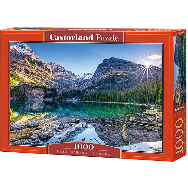 Пазл Castorland Озеро Охара, Канада, 1000 деталейПазлы классические<br>Характеристики:<br><br>• возраст: от 9 лет<br>• количество деталей: 1000 шт.<br>• размер собранного пазла: 68х47 см.<br>• материал: картон<br>• упаковка: картонная коробка<br>• размер упаковки: 35x5x25 см.<br>• вес: 500 гр.<br>• страна обладатель бренда: Польша<br><br>Пазл «Озеро Охара, Канада» от Castorland (Касторленд) отличается высоким качеством, высоким уровнем полиграфии, насыщенными цветами и идеальной стыковкой элементов. Пазл состоит из тысячи элементов, собрав которые, можно получить великолепную картину с изображением живописного горного озера Охара, расположенного в национальном заповеднике Йохо в Канаде. Причудливые снежные горы, величественные сосны, яркий голубой оттенок воды.<br><br>Пазл Озеро Охара, Канада, 1000 деталей, Castorland (Касторленд) можно купить в нашем интернет-магазине.<br>Ширина мм: 350; Глубина мм: 250; Высота мм: 50; Вес г: 500; Возраст от месяцев: 108; Возраст до месяцев: 2147483647; Пол: Унисекс; Возраст: Детский; SKU: 6725076;