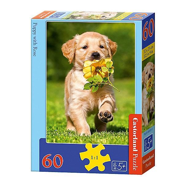 Пазл Castorland Щенок с розой, 60 деталейСимвол года<br>Характеристики:<br><br>• возраст: от 5 лет<br>• количество деталей: 60 шт.<br>• размер собранного пазла: 23х32 см.<br>• материал: картон<br>• упаковка: картонная коробка<br>• размер упаковки: 13x4x18 см.<br>• вес: 150 гр.<br>• страна обладатель бренда: Польша<br><br>Пазл «Щенок с розой» от Castorland (Касторленд) отличается высоким качеством, высоким уровнем полиграфии, насыщенными цветами и идеальной стыковкой элементов. Из 60 элементов пазла ребенок соберет красочную картину с изображением милого щенка, несущего в зубах желтую розу.<br><br>Пазл Щенок с розой, 60 деталей, Castorland (Касторленд) можно купить в нашем интернет-магазине.<br>Ширина мм: 180; Глубина мм: 130; Высота мм: 40; Вес г: 150; Возраст от месяцев: 60; Возраст до месяцев: 2147483647; Пол: Унисекс; Возраст: Детский; SKU: 6725088;
