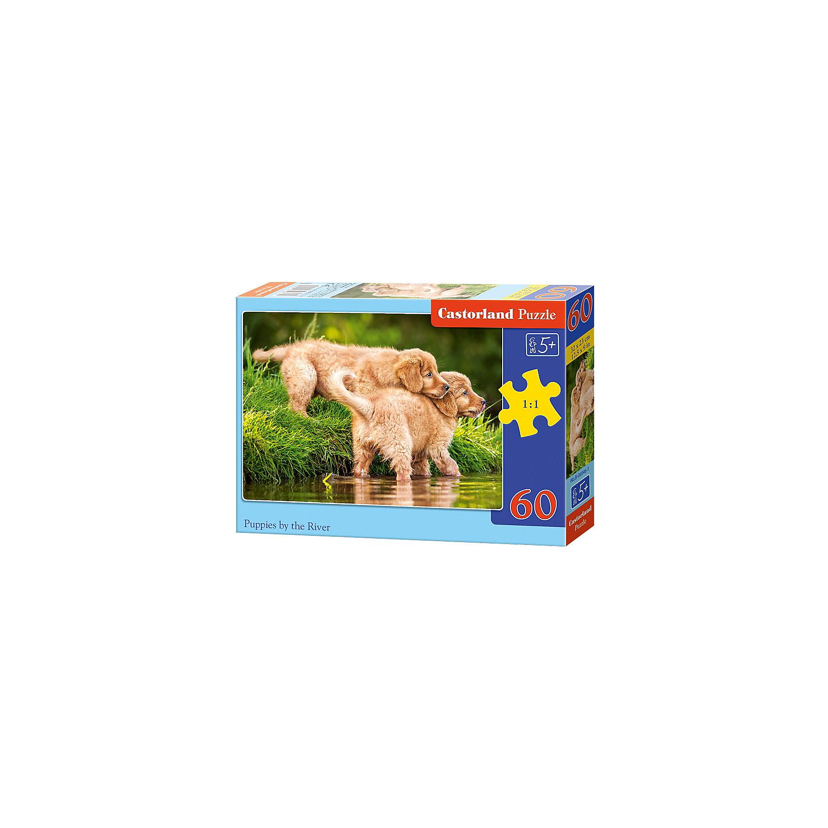 Пазл Castorland Щенки на реке, 60 деталейПазлы для малышей<br>Характеристики:<br><br>• возраст: от 5 лет<br>• количество деталей: 60 шт.<br>• размер собранного пазла: 32х23 см.<br>• материал: картон<br>• упаковка: картонная коробка<br>• размер упаковки: 18x4x13 см.<br>• вес: 150 гр.<br>• страна обладатель бренда: Польша<br><br>Пазл «Щенки на реке» от Castorland (Касторленд) отличается высоким качеством, высоким уровнем полиграфии, насыщенными цветами и идеальной стыковкой элементов. Из 60 элементов пазла ребенок соберет красочную картину с изображением забавных щенков.<br><br>Пазл Щенки на реке, 60 деталей, Castorland (Касторленд) можно купить в нашем интернет-магазине.<br><br>Ширина мм: 180<br>Глубина мм: 130<br>Высота мм: 40<br>Вес г: 150<br>Возраст от месяцев: 60<br>Возраст до месяцев: 2147483647<br>Пол: Унисекс<br>Возраст: Детский<br>SKU: 6725089