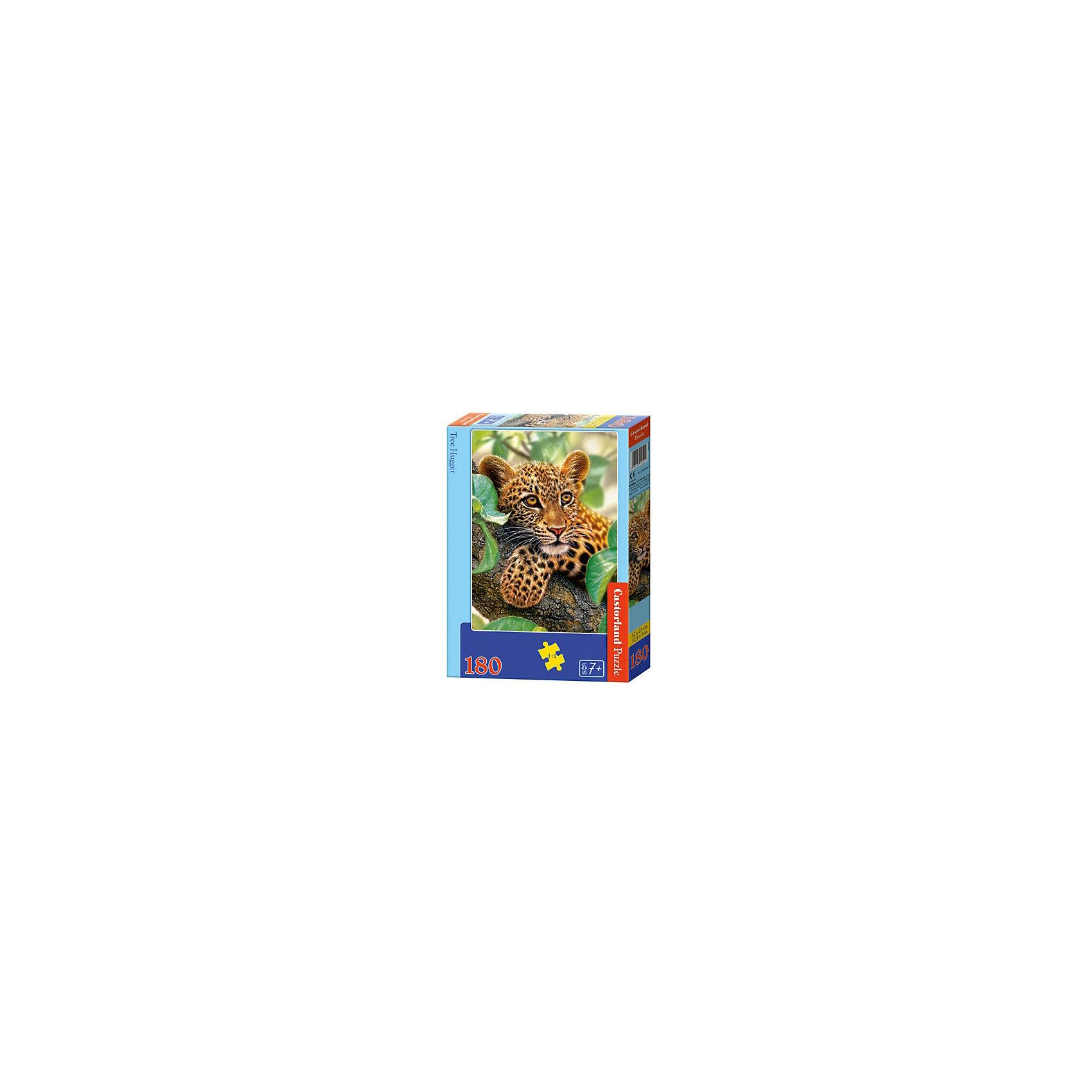 Пазл Castorland Ягуар на дереве, 180 деталейПазлы для детей постарше<br>Характеристики:<br><br>• возраст: от 7 лет<br>• количество деталей: 180 шт.<br>• размер собранного пазла: 23х32 см.<br>• материал: картон<br>• упаковка: картонная коробка<br>• размер упаковки: 17,5x3,7x24,5 см.<br>• вес: 300 гр.<br>• страна обладатель бренда: Польша<br><br>Пазл «Ягуар на дереве» от Castorland (Касторленд) отличается высоким качеством, высоким уровнем полиграфии, насыщенными цветами и идеальной стыковкой элементов. Из 180 элементов пазла ребенок соберет красочную картину с изображением ягуара, притаившегося на дереве.<br><br>Пазл Ягуар на дереве, 180 деталей, Castorland (Касторленд) можно купить в нашем интернет-магазине.<br><br>Ширина мм: 245<br>Глубина мм: 175<br>Высота мм: 37<br>Вес г: 300<br>Возраст от месяцев: 84<br>Возраст до месяцев: 2147483647<br>Пол: Унисекс<br>Возраст: Детский<br>SKU: 6725091