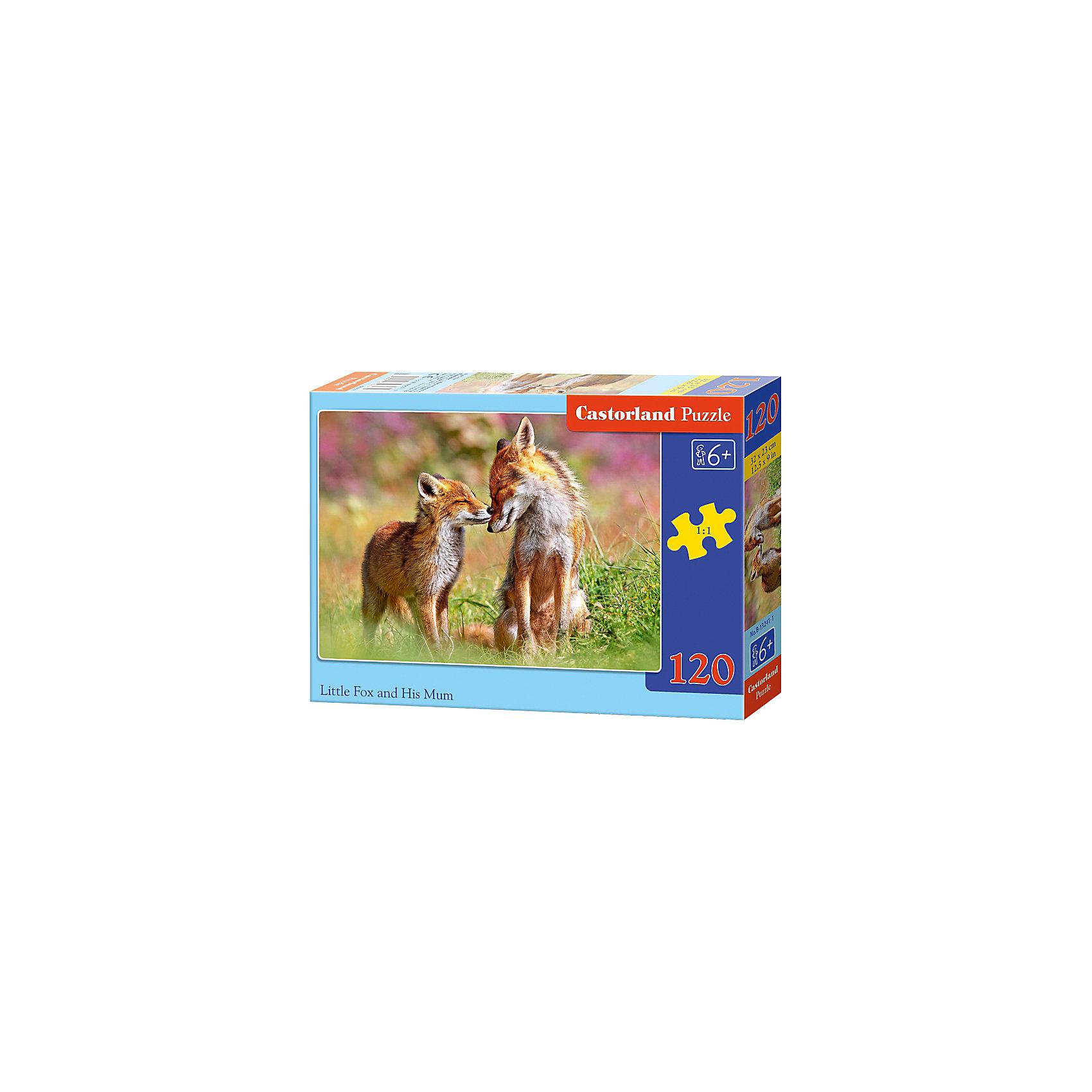 Пазл Castorland Лисы, 120 деталейПазлы для детей постарше<br>Характеристики:<br><br>• возраст: от 6 лет<br>• количество деталей: 120 шт.<br>• размер собранного пазла: 32х23 см.<br>• материал: картон<br>• упаковка: картонная коробка<br>• размер упаковки: 17,5x3,7x13 см.<br>• вес: 300 гр.<br>• страна обладатель бренда: Польша<br><br>Пазл «Лисы» от Castorland (Касторленд) отличается высоким качеством, высоким уровнем полиграфии, насыщенными цветами и идеальной стыковкой элементов. Из 120 элементов пазла ребенок соберет красочную картинку с изображением двух лисиц.<br><br>Пазл Лисы, 120 деталей, Castorland (Касторленд) можно купить в нашем интернет-магазине.<br><br>Ширина мм: 175<br>Глубина мм: 130<br>Высота мм: 37<br>Вес г: 300<br>Возраст от месяцев: 72<br>Возраст до месяцев: 2147483647<br>Пол: Унисекс<br>Возраст: Детский<br>SKU: 6725097