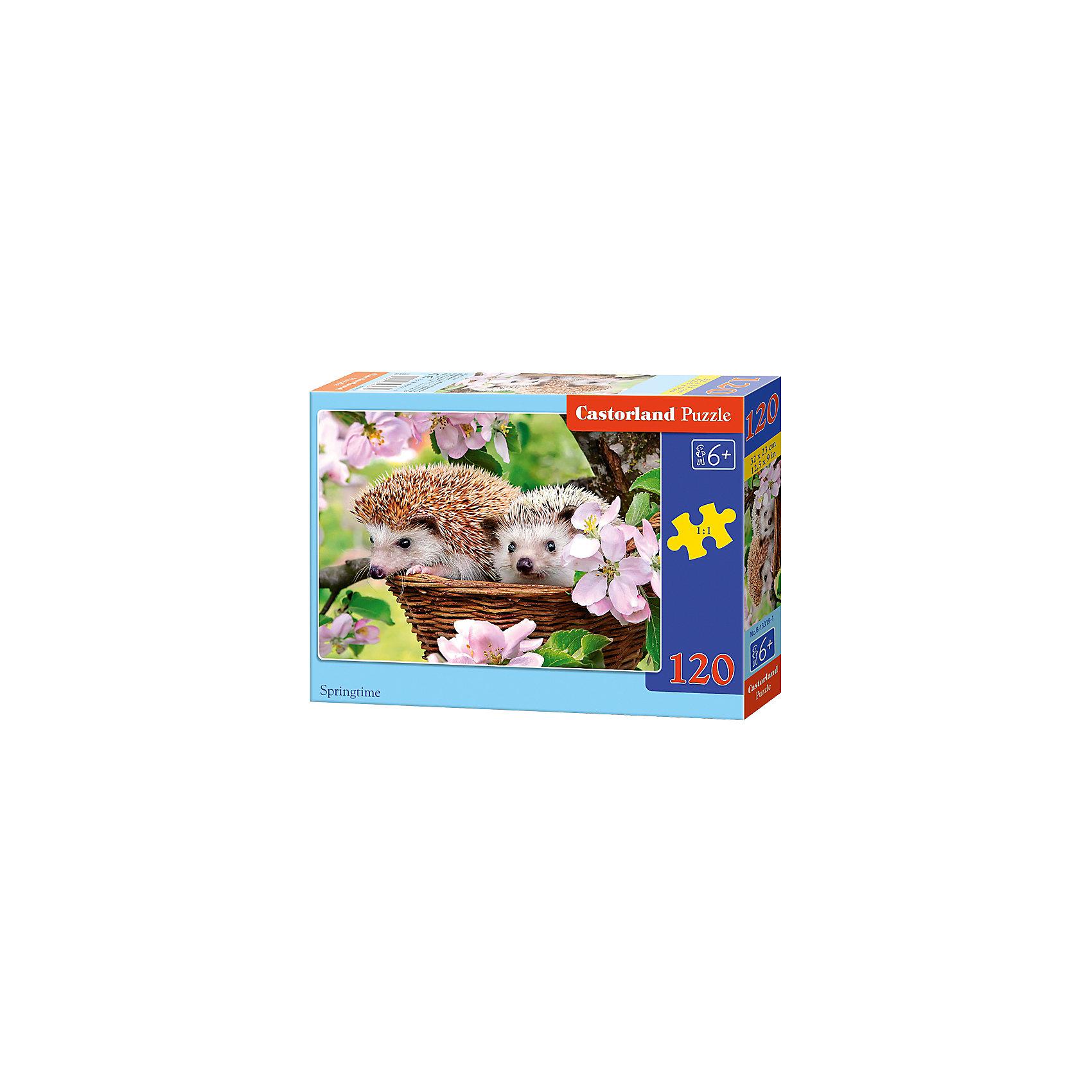 Пазл Castorland Ежики, 120 деталейПазлы для детей постарше<br>Характеристики:<br><br>• возраст: от 6 лет<br>• количество деталей: 120 шт.<br>• размер собранного пазла: 32х23 см.<br>• материал: картон<br>• упаковка: картонная коробка<br>• размер упаковки: 17,5x3,7x13 см.<br>• вес: 300 гр.<br>• страна обладатель бренда: Польша<br><br>Пазл «Ежики» от Castorland (Касторленд) отличается высоким качеством, высоким уровнем полиграфии, насыщенными цветами и идеальной стыковкой элементов. Из 120 элементов пазла ребенок соберет красочную картинку, на которой на фоне ярких цветов изображены два ежика в корзинке.<br><br>Пазл Ежики, 120 деталей, Castorland (Касторленд) можно купить в нашем интернет-магазине.<br><br>Ширина мм: 175<br>Глубина мм: 130<br>Высота мм: 37<br>Вес г: 300<br>Возраст от месяцев: 72<br>Возраст до месяцев: 2147483647<br>Пол: Унисекс<br>Возраст: Детский<br>SKU: 6725102