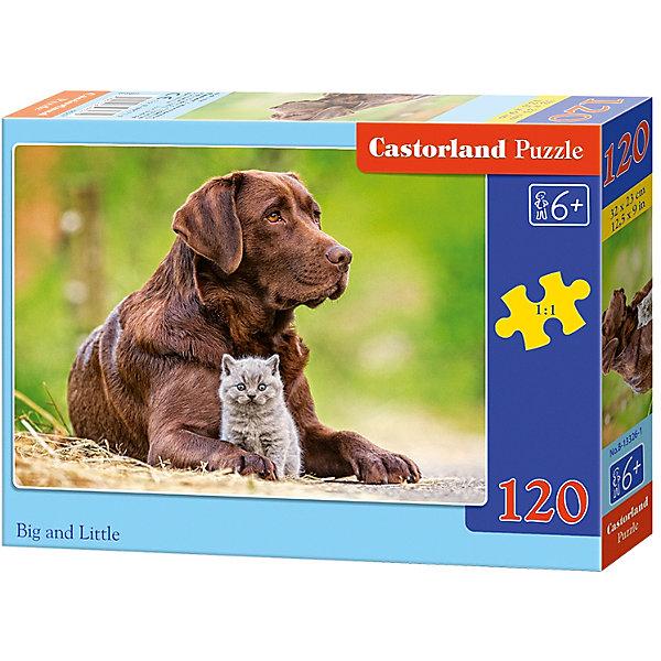 Пазл Castorland Большой и маленький, 120 деталейПазлы классические<br>Характеристики:<br><br>• возраст: от 6 лет<br>• количество деталей: 120 шт.<br>• размер собранного пазла: 32х23 см.<br>• материал: картон<br>• упаковка: картонная коробка<br>• размер упаковки: 17,5x3,7x13 см.<br>• вес: 300 гр.<br>• страна обладатель бренда: Польша<br><br>Пазл «Собака и котенок» от Castorland (Касторленд) отличается высоким качеством, высоким уровнем полиграфии, насыщенными цветами и идеальной стыковкой элементов. Из 120 элементов пазла ребенок соберет трогательную картинку с изображением большого пса и пушистого серого котенка.<br><br>Пазл Собака и котенок, 120 деталей, Castorland (Касторленд) можно купить в нашем интернет-магазине.<br>Ширина мм: 175; Глубина мм: 130; Высота мм: 37; Вес г: 300; Возраст от месяцев: 72; Возраст до месяцев: 2147483647; Пол: Унисекс; Возраст: Детский; SKU: 6725103;