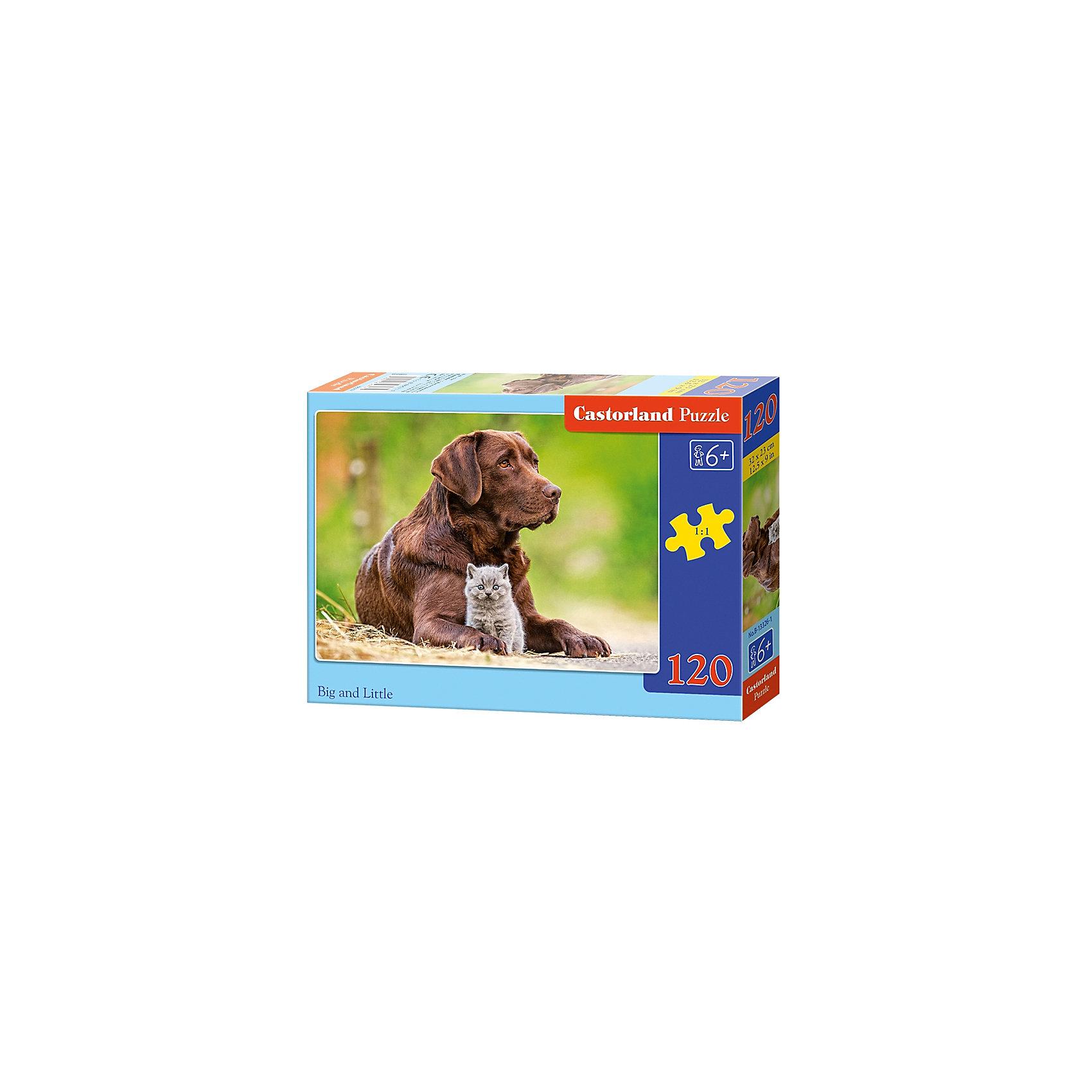 Пазл Castorland Большой и маленький, 120 деталейПазлы для детей постарше<br>Характеристики:<br><br>• возраст: от 6 лет<br>• количество деталей: 120 шт.<br>• размер собранного пазла: 32х23 см.<br>• материал: картон<br>• упаковка: картонная коробка<br>• размер упаковки: 17,5x3,7x13 см.<br>• вес: 300 гр.<br>• страна обладатель бренда: Польша<br><br>Пазл «Собака и котенок» от Castorland (Касторленд) отличается высоким качеством, высоким уровнем полиграфии, насыщенными цветами и идеальной стыковкой элементов. Из 120 элементов пазла ребенок соберет трогательную картинку с изображением большого пса и пушистого серого котенка.<br><br>Пазл Собака и котенок, 120 деталей, Castorland (Касторленд) можно купить в нашем интернет-магазине.<br><br>Ширина мм: 175<br>Глубина мм: 130<br>Высота мм: 37<br>Вес г: 300<br>Возраст от месяцев: 72<br>Возраст до месяцев: 2147483647<br>Пол: Унисекс<br>Возраст: Детский<br>SKU: 6725103