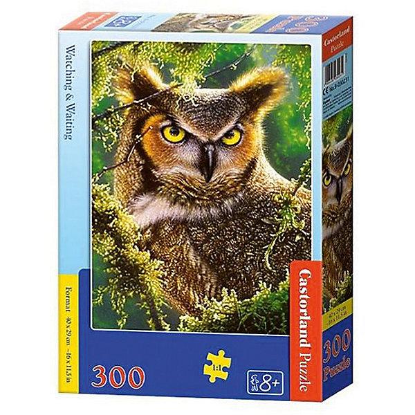 Пазл Castorland Сова. Наблюдение, 300 деталейПазлы для детей постарше<br>Характеристики:<br><br>• возраст: от 8 лет<br>• количество деталей: 300 шт.<br>• размер собранного пазла: 29х40 см.<br>• материал: картон<br>• упаковка: картонная коробка<br>• размер упаковки: 22x4,7x32 см.<br>• вес: 300 гр.<br>• страна обладатель бренда: Польша<br><br>Пазл «Сова. Наблюдение» от Castorland (Касторленд) отличается высоким качеством, высоким уровнем полиграфии, насыщенными цветами и идеальной стыковкой элементов. Из 300 элементов пазла ребенок соберет красивую картину с изображением желтоглазой совы в зеленой листве деревьев.<br><br>Пазл Сова. Наблюдение, 300 деталей, Castorland (Касторленд) можно купить в нашем интернет-магазине.<br><br>Ширина мм: 320<br>Глубина мм: 220<br>Высота мм: 47<br>Вес г: 300<br>Возраст от месяцев: 96<br>Возраст до месяцев: 2147483647<br>Пол: Унисекс<br>Возраст: Детский<br>SKU: 6725108