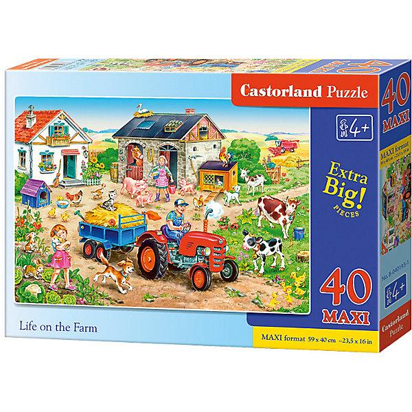 Купить Макси-пазл Castorland Жизнь на ферме , 40 деталей, Польша, Унисекс