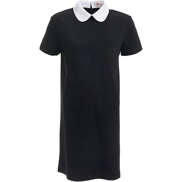 Платье для девочки BUTTON BLUEПлатья и сарафаны<br>Платье для девочки BUTTON BLUE<br>Школьные платья делают образ ученицы серьезным и элегантным. Если вы хотите купить  универсальную вещь и на каждый день, и для торжественного случая, вам стоит купить школьное платье. Трикотажное школьное платье для девочек обеспечит уют, свободу движений, удобство в повседневной носке. Белый воротник подчеркнет строгость модели и нежность ее обладательницы.<br>Состав:<br>75% полиэстер,              21% вискоза,                           4% эластан<br>Ширина мм: 236; Глубина мм: 16; Высота мм: 184; Вес г: 177; Цвет: черный; Возраст от месяцев: 72; Возраст до месяцев: 84; Пол: Женский; Возраст: Детский; Размер: 122,164,158,152,146,140,134,128; SKU: 6739402;