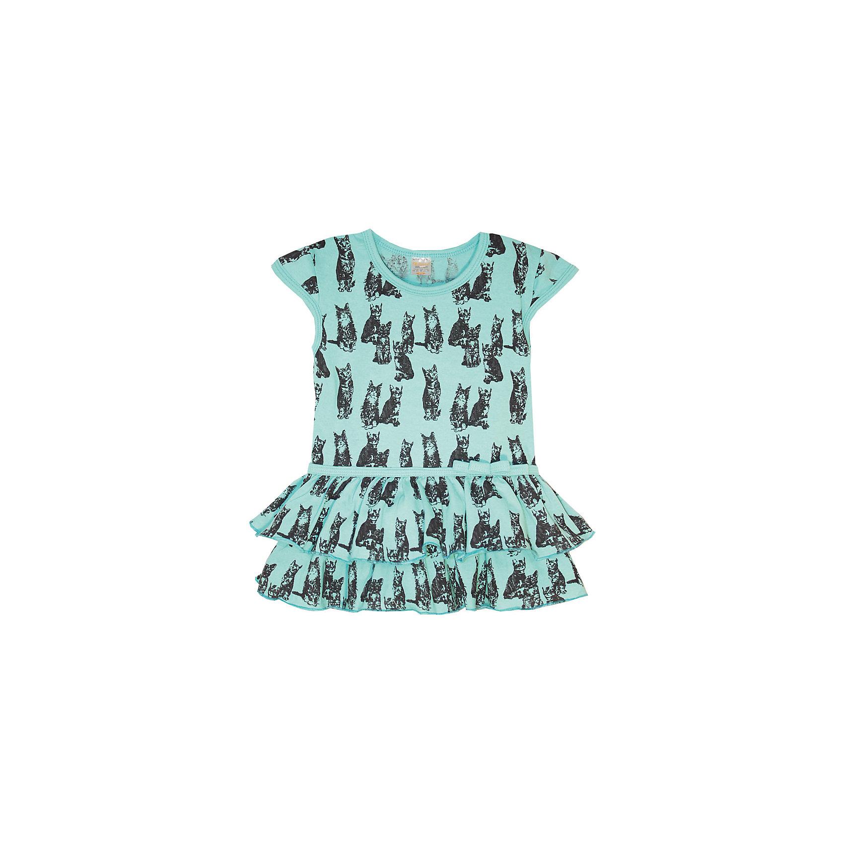 Платье для девочки KotMarKotПлатья и сарафаны<br>Платье для девочки KotMarKot<br>Состав:<br>100% хлопок<br><br>Ширина мм: 236<br>Глубина мм: 16<br>Высота мм: 184<br>Вес г: 177<br>Цвет: зеленый<br>Возраст от месяцев: 72<br>Возраст до месяцев: 84<br>Пол: Женский<br>Возраст: Детский<br>Размер: 122,92,98,104,110,116<br>SKU: 6755203