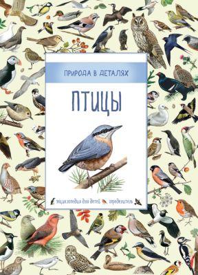 Росмэн Энциклопедия Птицы