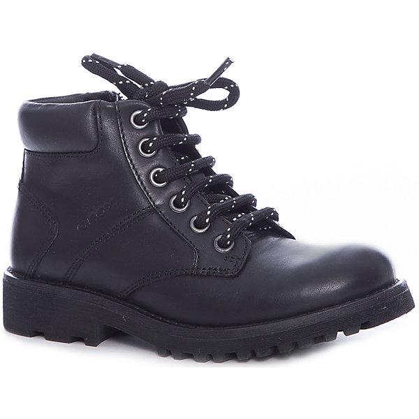 Купить Ботинки для мальчика Geox, Индия, черный, 34, 30, 41, 40, 39, 38, 37, 36, 35, 33, 32, 31, Мужской