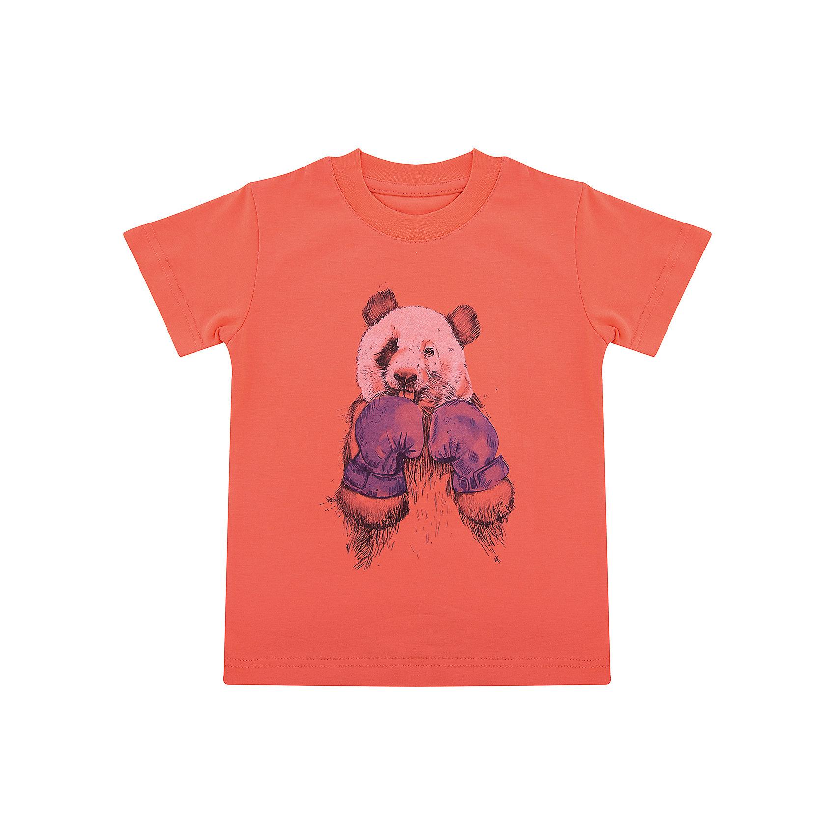 Футболка для мальчика WOWФутболки, поло и топы<br>Футболка для мальчика WOW<br>Незаменимой вещью в  гардеробе послужит футболка с коротким рукавом. Стильная и в тоже время комфортная модель, с яркой оригинальной печатью, будет превосходно смотреться на ребенке.<br>Состав:<br>кулирная гладь 100% хлопок<br><br>Ширина мм: 199<br>Глубина мм: 10<br>Высота мм: 161<br>Вес г: 151<br>Цвет: оранжевый<br>Возраст от месяцев: 60<br>Возраст до месяцев: 72<br>Пол: Мужской<br>Возраст: Детский<br>Размер: 116,122,98,104,110<br>SKU: 6871581