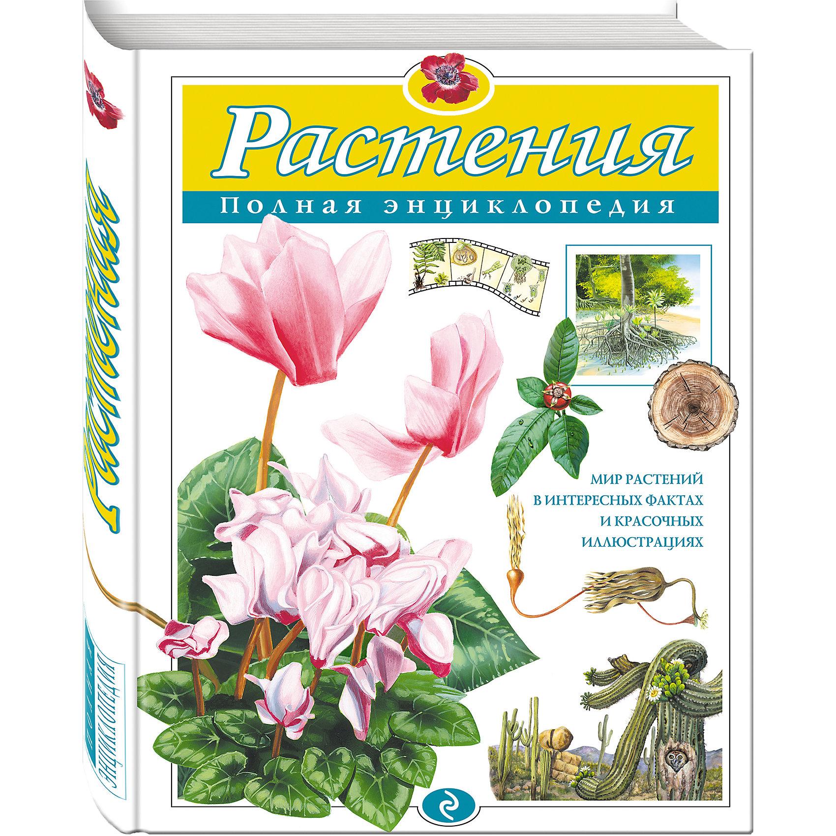 Полная энциклопедия РастенияДетские энциклопедии<br>Нас окружают тысячи видов растений -- деревья и травы, фрукты и овощи, прекрасные цветы. Каждый день мы наслаждаемся их видом, пользуемся их дарами... А много ли мы знаем о них?<br>Наша книга подарит вам сотни открытий. Вы узнаете о цветке, который так велик, что едва уместился бы на парте, о травах, что выше потолка, об орехах, которые тяжелее гири, и даже о простой крапиве вы узнаете удивительные вещи. Эта книга перевернет ваши представления о растениях, и вы непременно почувствуете любовь к их богатому и щедрому миру.<br><br>Ширина мм: 290<br>Глубина мм: 220<br>Высота мм: 20<br>Вес г: 1463<br>Возраст от месяцев: 72<br>Возраст до месяцев: 144<br>Пол: Унисекс<br>Возраст: Детский<br>SKU: 6877934