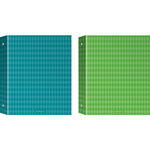 Купить Erich Krause Тетрадь на кольцах А5, 80л клетка Study up 2, 2 пантона+ламинат (глянцевый), Россия, Унисекс