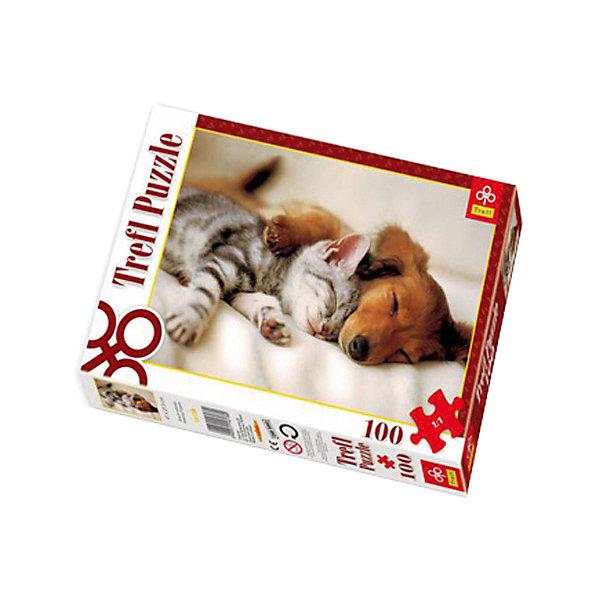 Пазл Спящие друзья, 100 деталей, TreflПазлы для малышей<br>Характеристики товара:<br><br>• возраст: от 3 лет;<br>• материал: картон;<br>• в комплекте: 100 деталей;<br>• размер упаковки: 28,8х19,3х4,1 см;<br>• вес упаковки: 310 гр.;<br>• страна производитель: Польша.<br><br>Пазл «Спящие друзья» Trefl — красочный пазл с изображением милых спящих животных. Все детали выполнены из плотного качественного картона и хорошо соединяются между собой. Картинка имеет специальное покрытие, которое сохраняет цвет изображения долгое время. Сборка пазлов способствует развитию логического мышления, мелкой моторики рук, усидчивости.<br><br>Пазл «Спящие друзья» Trefl можно приобрести в нашем интернет-магазине.<br>Ширина мм: 193; Глубина мм: 288; Высота мм: 41; Вес г: 310; Возраст от месяцев: 72; Возраст до месяцев: 96; Пол: Унисекс; Возраст: Детский; SKU: 6908031;