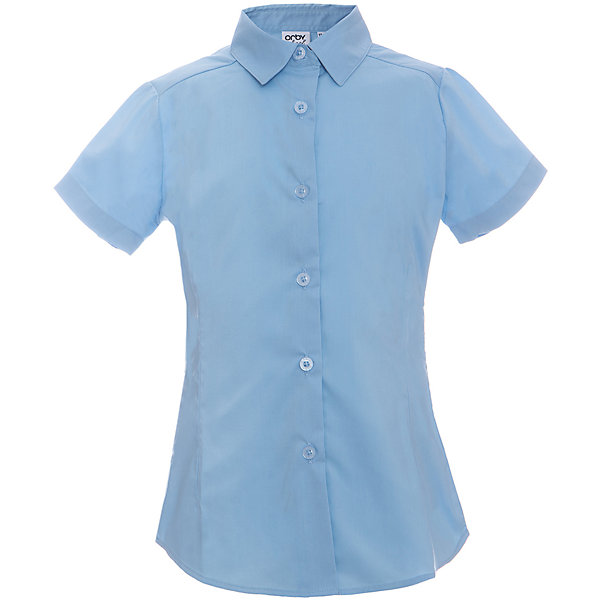 Блузка для девочки OrbyБлузки и рубашки<br>Характеристики товара:<br><br>• цвет: голубой<br>• состав ткани: 66% ПЭ, 30% хлопок, 4%эластан<br>• особенности: школьная, праздничная<br>• короткие рукава<br>• застежка: пуговицы<br>• отложной воротник<br>• сезон: круглый год<br>• страна бренда: Россия<br>• страна изготовитель: Россия<br><br>Белая блузка для девочки Orby - базовая вещь гардероба. Такая блузка - отличный вариант практичной и стильной школьной одежды. <br><br>Голубая блузка для девочки Orby - отличный способ разнообразить гардероб. Такая блузка хорошо дополнит школьную форму. <br><br>Блузку для девочки Orby (Орби) можно купить в нашем интернет-магазине.<br>Ширина мм: 186; Глубина мм: 87; Высота мм: 198; Вес г: 197; Цвет: голубой; Возраст от месяцев: 72; Возраст до месяцев: 84; Пол: Женский; Возраст: Детский; Размер: 122,170,164,158,152,146,140,134,128; SKU: 6960307;