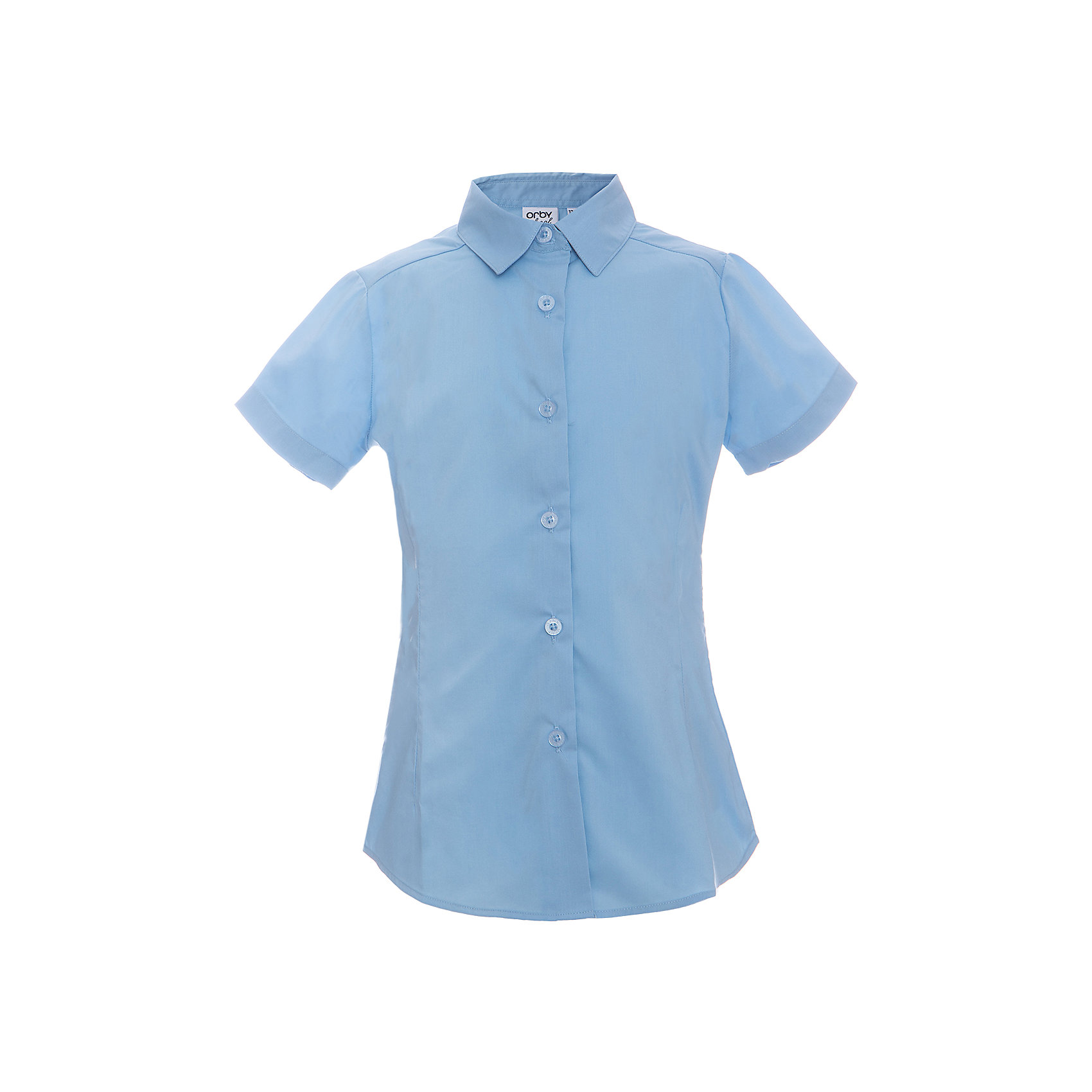 Блузка для девочки OrbyБлузки и рубашки<br>Характеристики товара:<br><br>• цвет: голубой<br>• состав ткани: 66% ПЭ, 30% хлопок, 4%эластан<br>• особенности: школьная, праздничная<br>• короткие рукава<br>• застежка: пуговицы<br>• отложной воротник<br>• сезон: круглый год<br>• страна бренда: Россия<br>• страна изготовитель: Россия<br><br>Белая блузка для девочки Orby - базовая вещь гардероба. Такая блузка - отличный вариант практичной и стильной школьной одежды. <br><br>Голубая блузка для девочки Orby - отличный способ разнообразить гардероб. Такая блузка хорошо дополнит школьную форму. <br><br>Блузку для девочки Orby (Орби) можно купить в нашем интернет-магазине.<br><br>Ширина мм: 186<br>Глубина мм: 87<br>Высота мм: 198<br>Вес г: 197<br>Цвет: голубой<br>Возраст от месяцев: 168<br>Возраст до месяцев: 180<br>Пол: Женский<br>Возраст: Детский<br>Размер: 170,122,128,134,140,146,152,158,164<br>SKU: 6960307