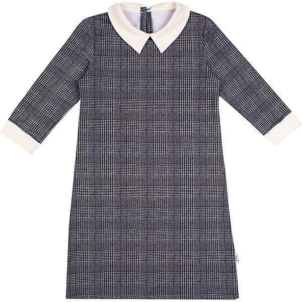 Платье Апрель для девочкиПлатья и сарафаны<br>Характеристики товара:<br><br>• цвет: серый;<br>• состав: 95% хлопок, 5% лайкра;<br>• сезон: демисезон;<br>• рукава 3/4;<br>• застежка: молния сзади;<br>• с длинным рукавом;<br>• особенности: школьное, в клетку;<br>• страна бренда: Россия;<br>• страна производства: Россия.<br><br>Школьное платье с длинным рукавом для девочки. Серое платье в клетку, рукава 3/4. Воротничок и манжеты контрастного белого цвета.<br><br>Платье для девочки Апрель можно купить в нашем интернет-магазине.<br><br>Ширина мм: 236<br>Глубина мм: 16<br>Высота мм: 184<br>Вес г: 177<br>Цвет: черный<br>Возраст от месяцев: 84<br>Возраст до месяцев: 96<br>Пол: Женский<br>Возраст: Детский<br>Размер: 146,122,134,140,128<br>SKU: 6981057