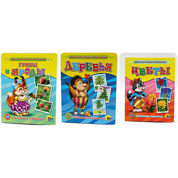 Комплект из 3 наборов карточек Грибы и ягоды, Деревья, ЦветыОбучающие карточки<br>Обучающие карточки серии «Уроки для самых маленьких» помогут ребёнку узнать много интересного об окружающем мире, его богатстве и многообразии. Каждый набор включает 16 карточек и посвящён определённой тематике. Благодаря данному набору ребёнок в познавательной и в то же время игровой форме узнает, как безопасно вести себя дома и на улице, как правильно поступать в той или иной ситуации, а также познакомится с телефонными номерами экстренных служб. Работа с карточками станет для малыша не только увлекательным занятием, но и начальным этапом подготовки к дальнейшему обучению в школе.<br><br>Ширина мм: 170<br>Глубина мм: 220<br>Высота мм: 18<br>Вес г: 491<br>Возраст от месяцев: 12<br>Возраст до месяцев: 36<br>Пол: Унисекс<br>Возраст: Детский<br>SKU: 6990127