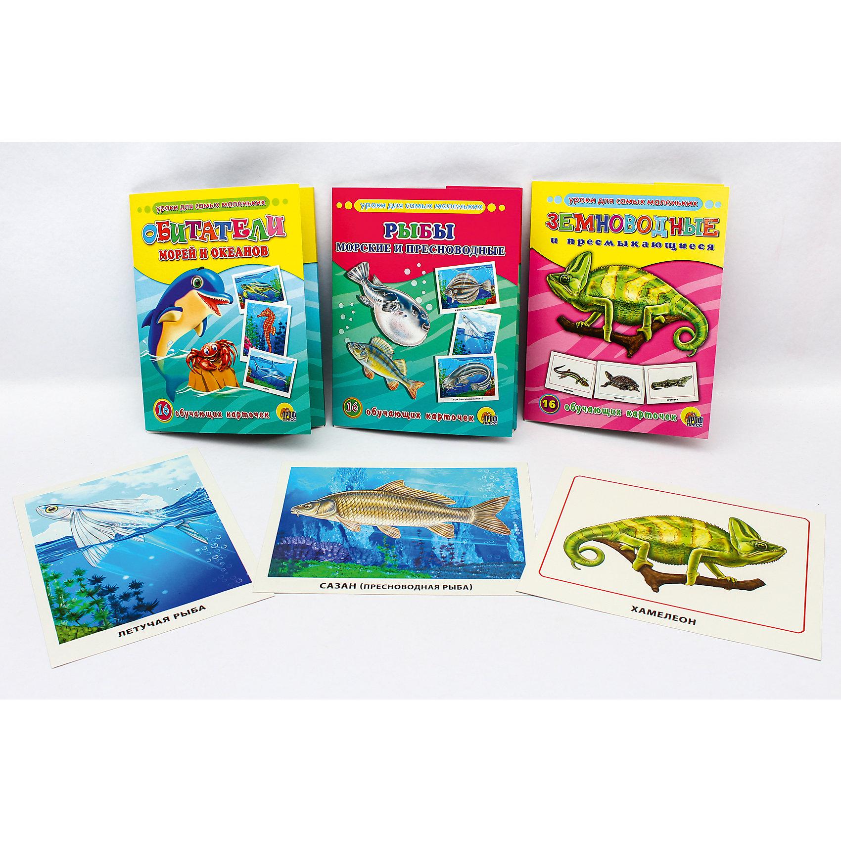 Обучающие карточки серии «Уроки для самых маленьких»Обучающие карточки<br>Обучающие карточки серии «Уроки для самых маленьких» помогут ребёнку узнать много интересного об окружающем мире, его богатстве и многообразии. Каждый набор включает 16 карточек и посвящён определённой тематике. Благодаря данному набору ребёнок в познавательной и в то же время игровой форме узнает, как безопасно вести себя дома и на улице, как правильно поступать в той или иной ситуации, а также познакомится с телефонными номерами экстренных служб. Работа с карточками станет для малыша не только увлекательным занятием, но и начальным этапом подготовки к дальнейшему обучению в школе.<br><br>Ширина мм: 170<br>Глубина мм: 220<br>Высота мм: 18<br>Вес г: 491<br>Возраст от месяцев: 12<br>Возраст до месяцев: 36<br>Пол: Унисекс<br>Возраст: Детский<br>SKU: 6990131