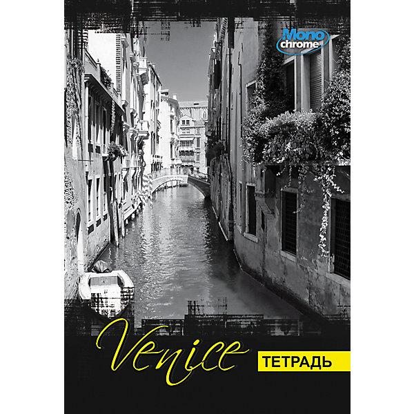 Купить Общая тетрадь А4, 96 листов, клетка, на гребне, обложка Венеция, АппликА, Россия, Унисекс