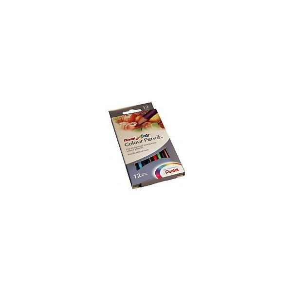 Цветные карандаши 12 цветов Colour pencils PentelЦветные<br>Характеристики:<br><br>• возраст: от 6 лет<br>• количество цветов: 12<br>• материал корпуса: древесина<br>• длина: 17,5 см.<br>• упаковка: картонная коробка с внутренним выдвижным карманом<br>• размер упаковки: 21,5х9х1 см.<br><br>Корпус карандашей «Color Pencils» выполнен из древесины мягких сортов, покрыт лаком на водной основе. Для изготовления цветных грифелей использованы современные и безопасные полимеры, благодаря которым, грифели не крошится при рисовании, не ломаются при затачивании или случайном падении.<br><br>Высокое качество карандашей открывает широкие горизонты для экспериментов: вы можете их использовать в сочетании с акварелью и масляной пастелью, чтобы добиться более глубокого и оригинального эффекта в своих работах. Карандаши подходят для рисования на практически всех видах бумаги, натуральных тканях и даже дереве.<br><br>Карандаши упакованы в яркую картонную коробку с внутренним выдвижным карманом, разделены картонными перегородками, благодаря чему убирать и доставать карандаши намного проще.<br><br>Карандаши «Color Pencils» устойчивы к вредному воздействию воды и выцветанию. Насыщенные и яркие цвета помогают стимулировать детское воображение, развивают моторику и восприятие мира цвета, а также любовь к изобразительному творчеству.<br><br>Цветные карандаши 12 цветов Colour pencils Pentel (Пентел) можно купить в нашем интернет-магазине.<br>Ширина мм: 90; Глубина мм: 10; Высота мм: 220; Вес г: 110; Возраст от месяцев: 72; Возраст до месяцев: 2147483647; Пол: Унисекс; Возраст: Детский; SKU: 7010465;