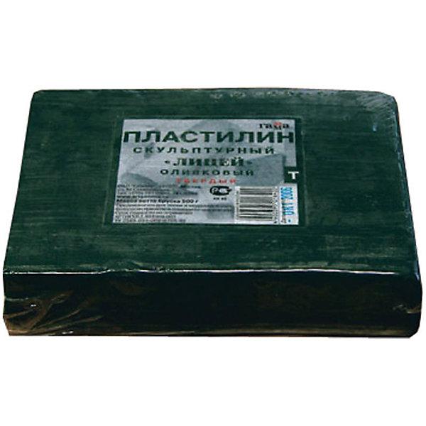 Пластилин скульптурный оливковый 0.5 кг, твердый ГаммаРисование и лепка<br>Характеристики:<br><br>• возраст: от 7 лет<br>• цвет: оливковый<br>• твердый<br>• вес: 500 гр.<br>• упаковка: пленка<br>• размер упаковки: 10х12х3,5 см.<br><br>Твердый скульптурный пластилин предназначен для любительских и профессиональных скульптурных работ. Сохраняя все достоинства традиционного пластилина, он пластичен в процессе моделирования и при этом идеально держит форму, что позволяет создавать из него небольшие предметы, в которых требуется очень тонкая и четкая проработка формы.<br><br>Пластилин изготовлен из воскообразной массы с добавлением минеральных пигментов и наполнителей. Устойчив к температурным изменениям.<br><br>Пластилин скульптурный оливковый 0.5 кг, твердый Гамма можно купить в нашем интернет-магазине.<br>Ширина мм: 105; Глубина мм: 115; Высота мм: 30; Вес г: 505; Возраст от месяцев: 84; Возраст до месяцев: 2147483647; Пол: Унисекс; Возраст: Детский; SKU: 7010506;