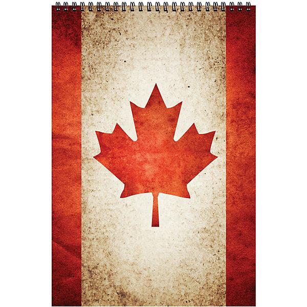 Блокнот А5 80л на спирали CanadaБумажная продукция<br>Характеристики товара:<br><br>• количество листов: 80;<br>• формат: А5;<br>• линовка: клетка;<br>• возраст: от 7 лет;<br>• размер: 21х15 см;<br>• размер упаковки: 21х15,5х2 см;<br>• вес: 172 грамма.<br><br>Блокнот Canada надежно сохранит важные записи. Внутренний блок из 80 листов скреплен спиралью и защищен плотной обложкой из картона. При необходимости блокнот можно использовать вместо общей тетради. Формат блокнота - А5.<br><br>Блокнот А5 80л на спирали Canada можно купить в нашем интернет-магазине.<br><br>Ширина мм: 210<br>Глубина мм: 155<br>Высота мм: 20<br>Вес г: 172<br>Возраст от месяцев: 48<br>Возраст до месяцев: 2147483647<br>Пол: Унисекс<br>Возраст: Детский<br>SKU: 7029923