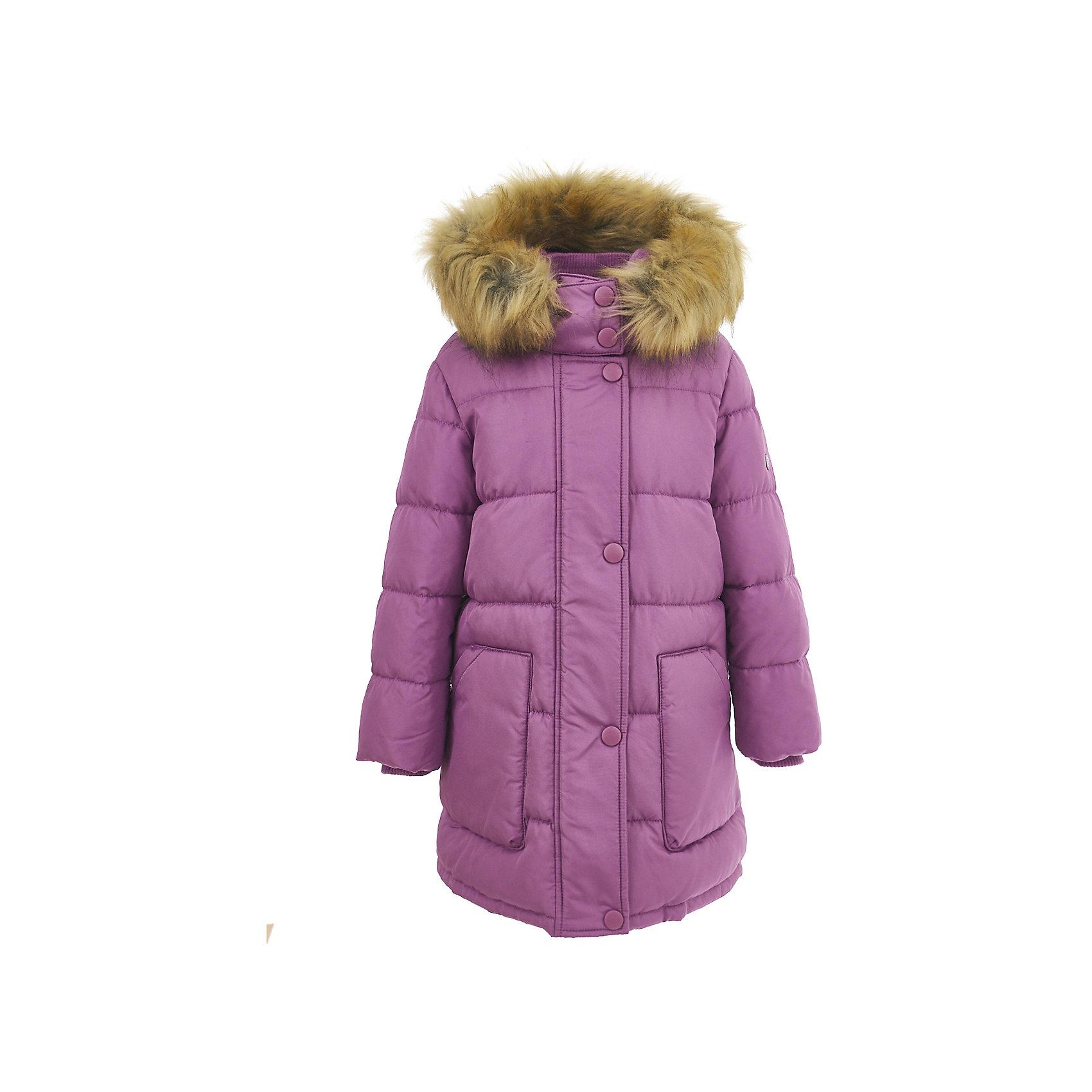 Полупальто BUTTON BLUE для девочкиВерхняя одежда<br>Полупальто BUTTON BLUE для девочки<br>Стильное зимнее пальто для девочек - залог хорошего настроения в морозный день! Классное детское пальто по оптимальной цене принесет удовольствие от покупки! К тому же, недорогое пальто - не значит скучное! Красивый цвет, модный силуэт, динамичная горизонтальная стежка, крупные детали обеспечивают пальто прекрасный внешний вид! Внутренняя утяжка создает надежную защиту от ветра. Если Вы хотите купить зимнее пальто и не сомневаться в его качестве и комфорте, детское пальто от Button Blue - отличный  вариант!<br>Состав:<br>100% полиэстер               Подкладка: 100% полиэстер (флис)/100% полиэстер  Утеплитель 100% полиэстер (fake down) мех: искусственный<br><br>Ширина мм: 356<br>Глубина мм: 10<br>Высота мм: 245<br>Вес г: 519<br>Цвет: лиловый<br>Возраст от месяцев: 24<br>Возраст до месяцев: 36<br>Пол: Женский<br>Возраст: Детский<br>Размер: 98,146,152,104,110,116,122,128,158,134,140<br>SKU: 7037993