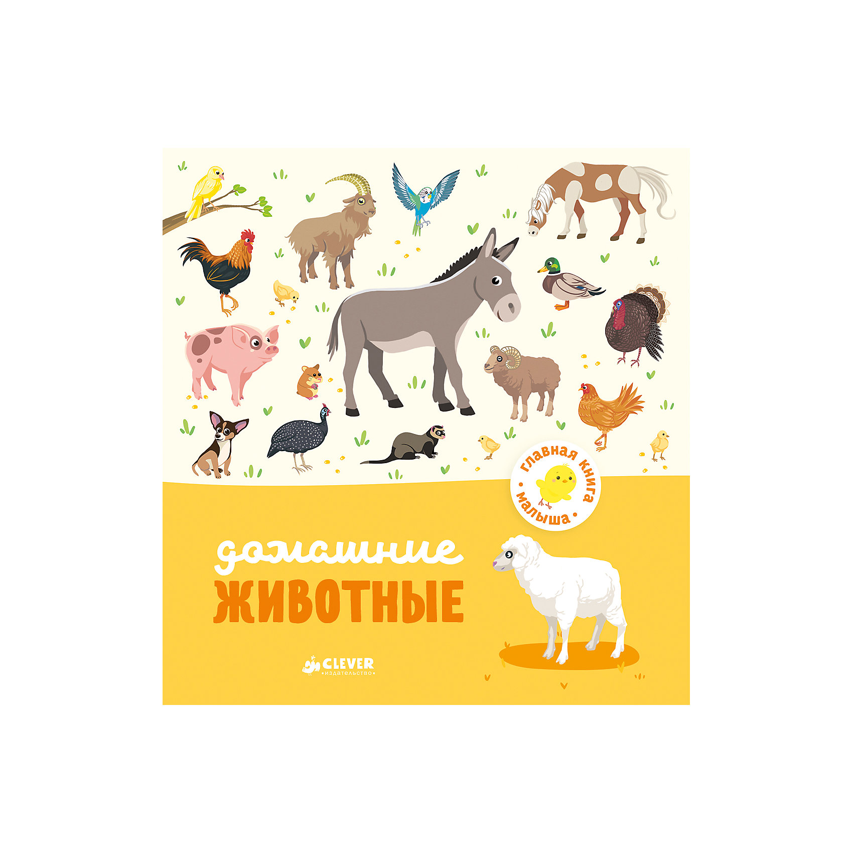 Домашние животные, А. Бессон, Главная книга малышаОкружающий мир<br>Характеристики товара:<br><br>• ISBN: 978-5-00115-008-4;<br>• возраст: от 1 года;<br>• формат: 70х90/16;<br>• бумага: мелованная;<br>• тип обложки: 7Бц - твердая, целлофанированная (или лакированная);<br>• иллюстрации: цветные;<br>• серия: Главная книга малыша;<br>• издательство: Клевер Медиа Групп, 2017 г.;<br>• автор: Бессон Агнес;<br>• редактор: Видревич Ирина;<br>• переводчик: Маслиева Елизавета;<br>• художник: Сюрэн;<br>• количество страниц: 24;<br>• размеры: 18,6х17,5х0,8 см;<br>• масса: 208 г.<br><br>Книга с красочными крупными иллюстрациями и простым текстом подойдет для самых маленьких. <br><br>Интересные задания познакомят ребенка с окружающим миром. На каждом развороте расположены разные домашние животные. Веселые задачки «Найди и покажи» развивают внимание, логику и мышление.<br><br>Книгу «Домашние животные», А. Бессон, Клевер Медиа Групп, можно купить в нашем интернет-магазине.<br><br>Ширина мм: 180<br>Глубина мм: 170<br>Высота мм: 8<br>Вес г: 200<br>Возраст от месяцев: 12<br>Возраст до месяцев: 36<br>Пол: Унисекс<br>Возраст: Детский<br>SKU: 7039970