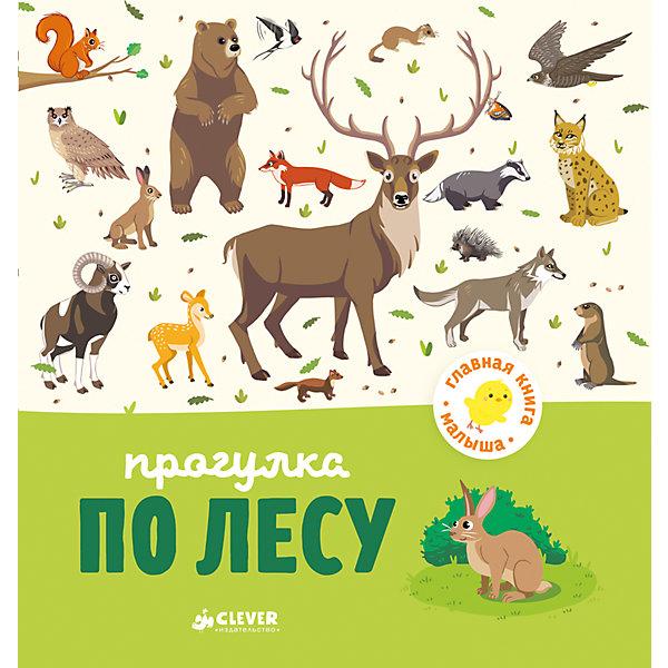 Купить Прогулка по лесу, А. Бессон, Главная книга малыша, Clever, Латвия, Унисекс