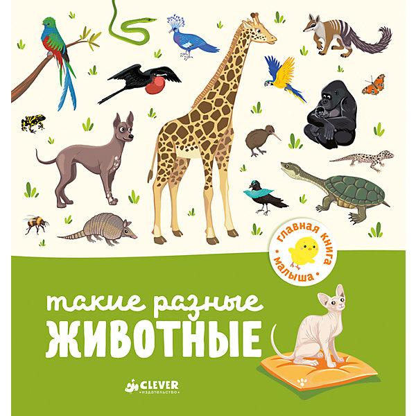 Купить Такие разные животные, А. Бессон, Главная книга малыша, Clever, Латвия, Унисекс
