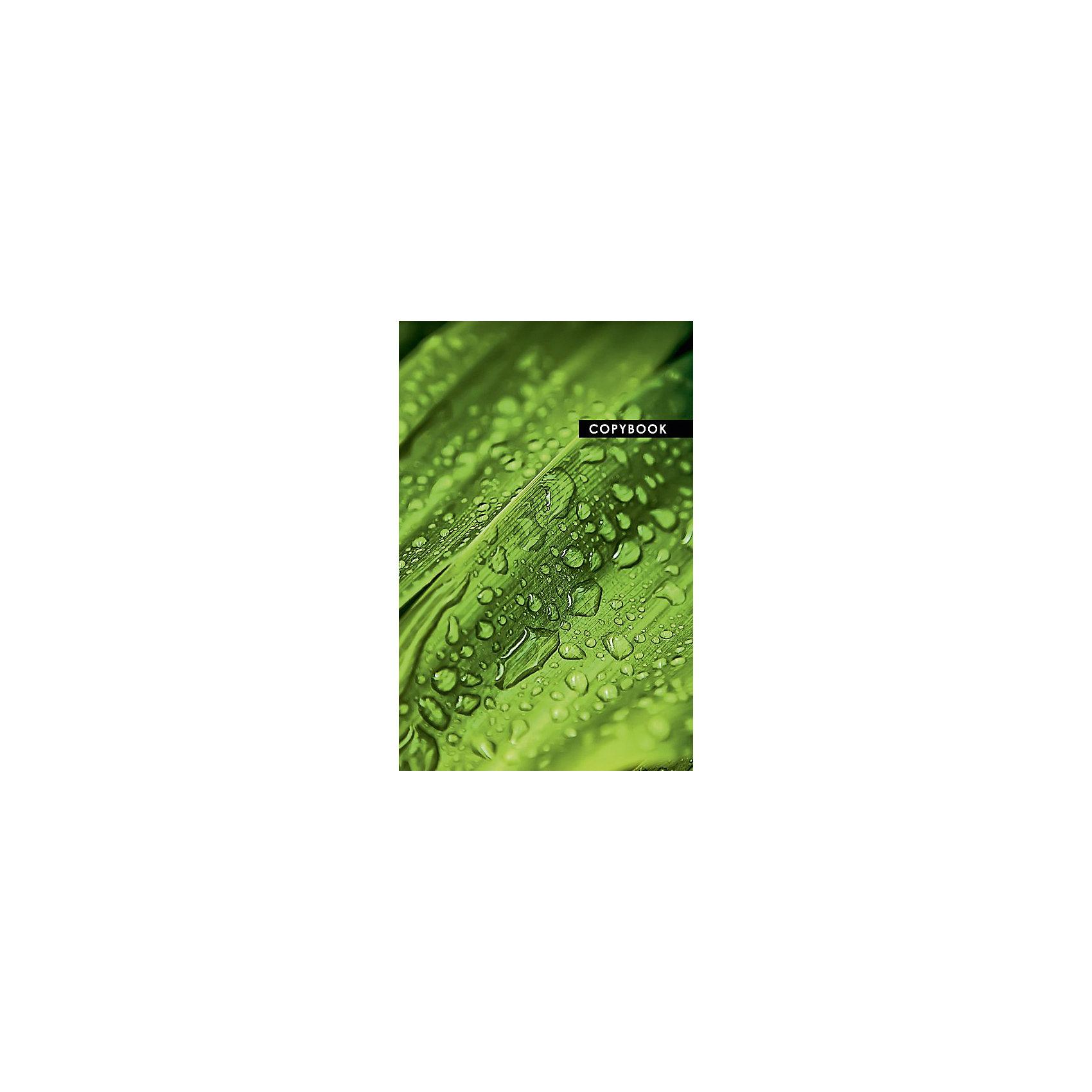 Тетрадь 96 листов Капли Феникс+,Бумажная продукция<br>Тетрадь 96 л. КАПЛИ /А4, переплет 7БЦ, 192 стр. Обложки полноцвет под глянц. пленкой, блок офсет в одну краску, клетка./<br><br>Ширина мм: 300<br>Глубина мм: 200<br>Высота мм: 10<br>Вес г: 530<br>Возраст от месяцев: 72<br>Возраст до месяцев: 2147483647<br>Пол: Унисекс<br>Возраст: Детский<br>SKU: 7046461