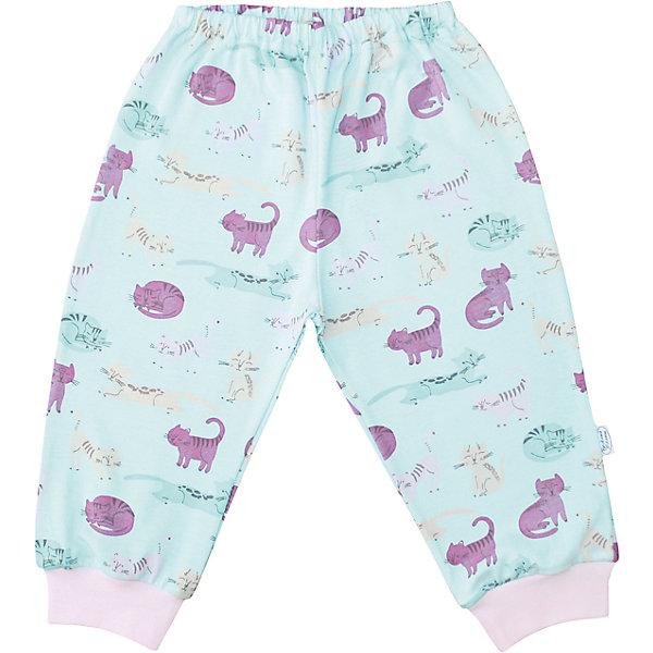 Штанишки Веселый малыш для девочкиПолзунки и штанишки<br>Характеристики товара:<br><br>• цвет: голубой<br>• состав ткани: 100% хлопок <br>• подкладка: нет<br>• сезон: круглый год<br>• пояс: резинка<br>• страна бренда: Россия<br>• страна изготовитель: Россия<br><br>Материал хлопковых штанишек для детей позволяет коже дышать и не вызывает аллергии. Такие штанишки для девочки декорированы симпатичным принтом. Детские штанишки от бренда Веселый малыш не натирают и не жмут благодаря мягкой резинке на поясе. Натуральный хлопок делает штанишки для ребенка приятными на ощупь. <br><br>Штанишки Веселый малыш для девочки можно купить в нашем интернет-магазине.<br><br>Ширина мм: 157<br>Глубина мм: 13<br>Высота мм: 119<br>Вес г: 200<br>Цвет: розовый<br>Возраст от месяцев: 12<br>Возраст до месяцев: 18<br>Пол: Женский<br>Возраст: Детский<br>Размер: 86,68,80,74<br>SKU: 7053279